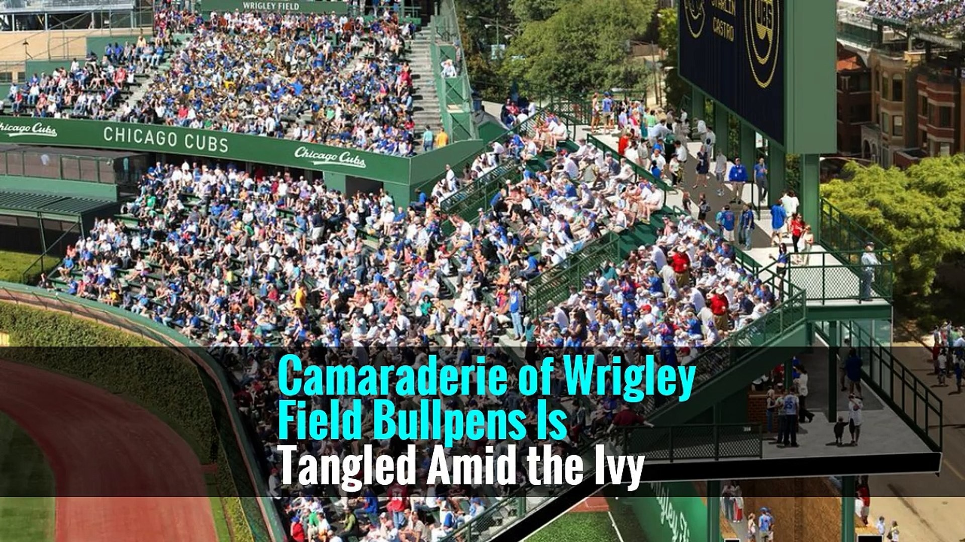 1920x1080 Camaraderie of Wrigley Field Bullpens Is Tangled Amid the Ivy - - video  dailymotion