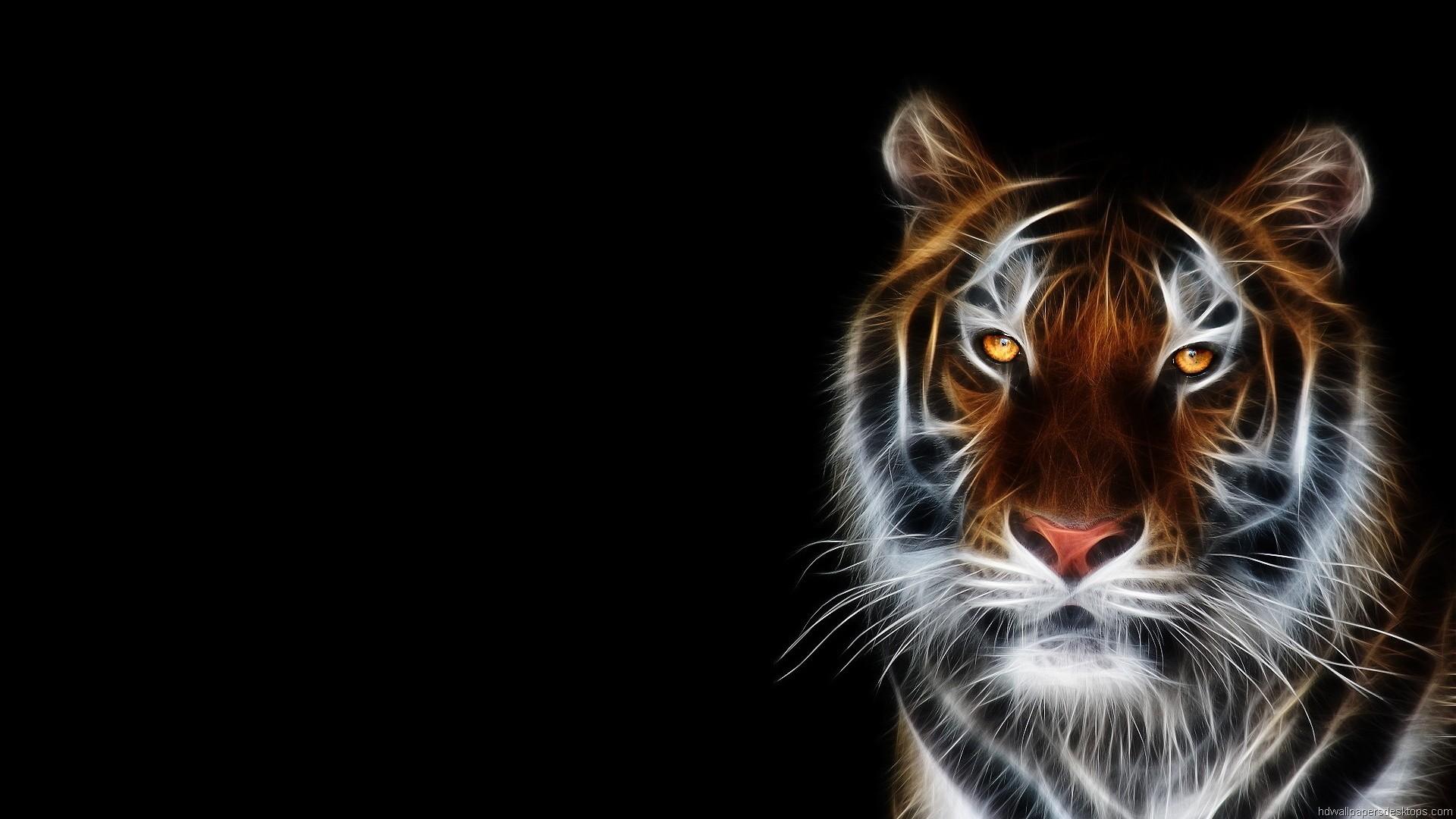 Hd Animal Wallpapers Wild Life Animal Desktop Images: HD Animal Wallpaper 1920x1080 (73+ Images