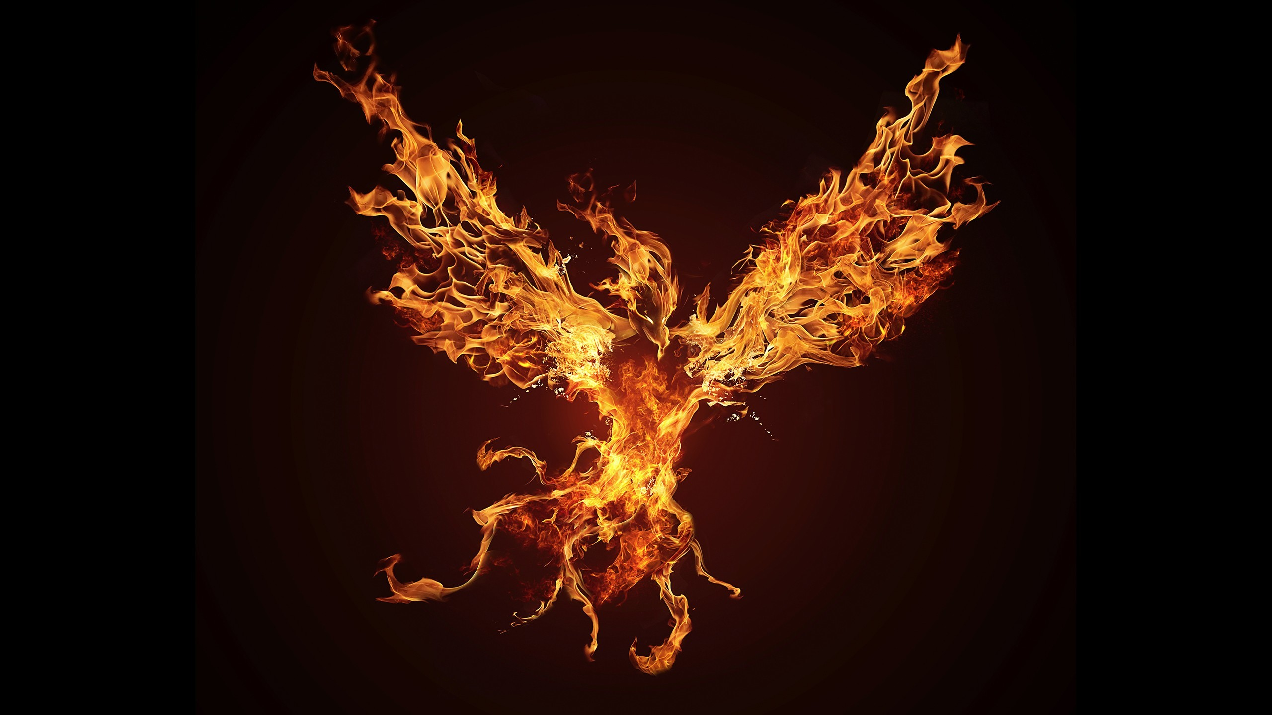 2560x1440  Fantasy Phoenix Wallpaper 14 Desktop Wallpaper Wallpaper