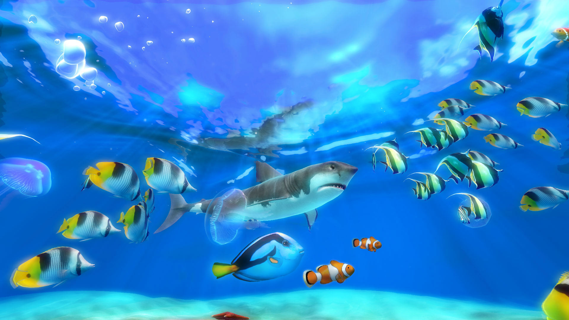 live aquarium wallpapers for windows 81 43 images