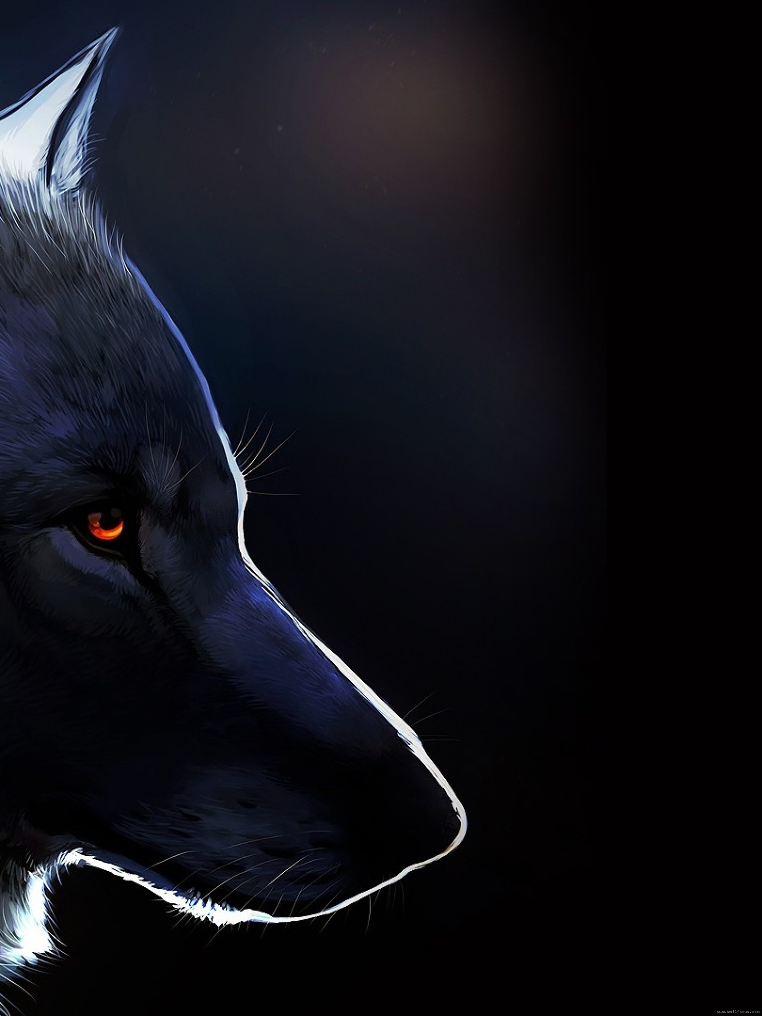 Dark Wolf Wallpaper 63 Images