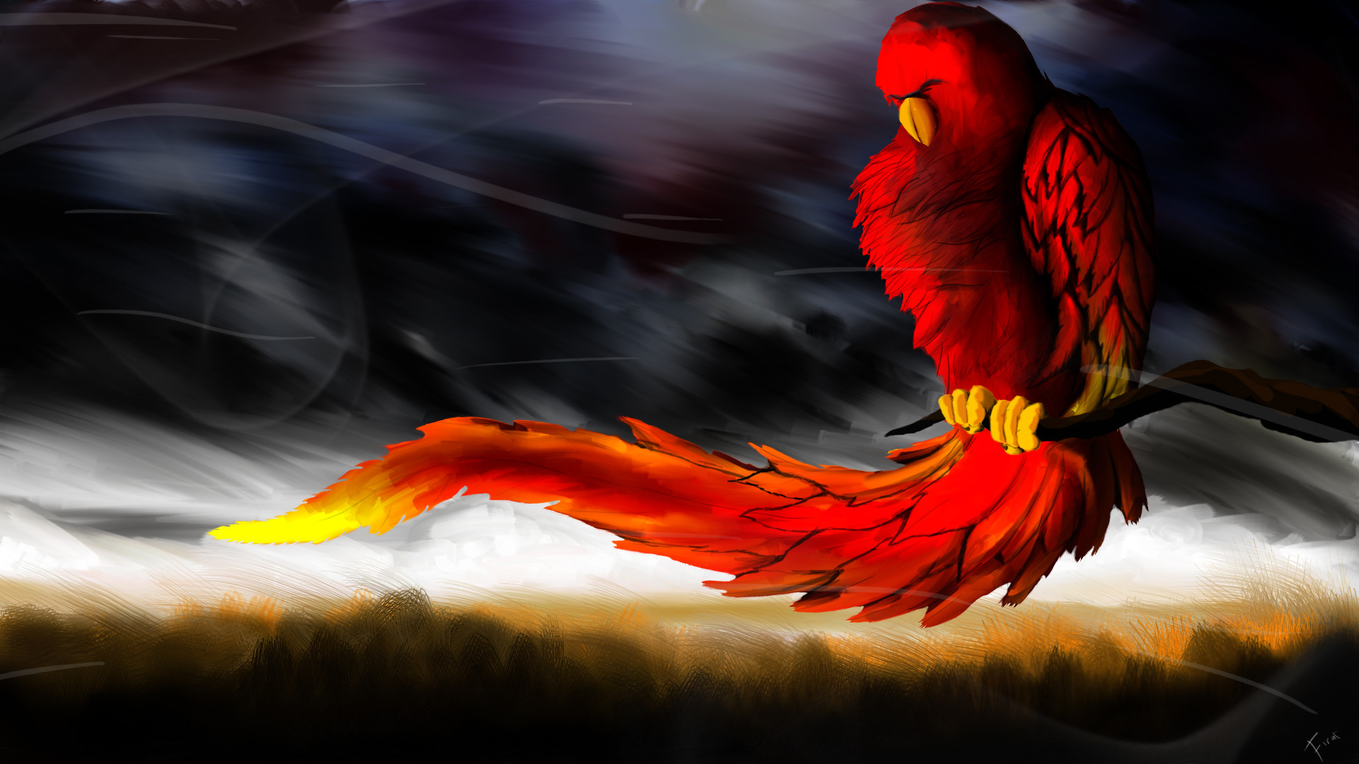 1920x1080 3d-parrot-cool-wallpapers-hd-desktop-background.jpg