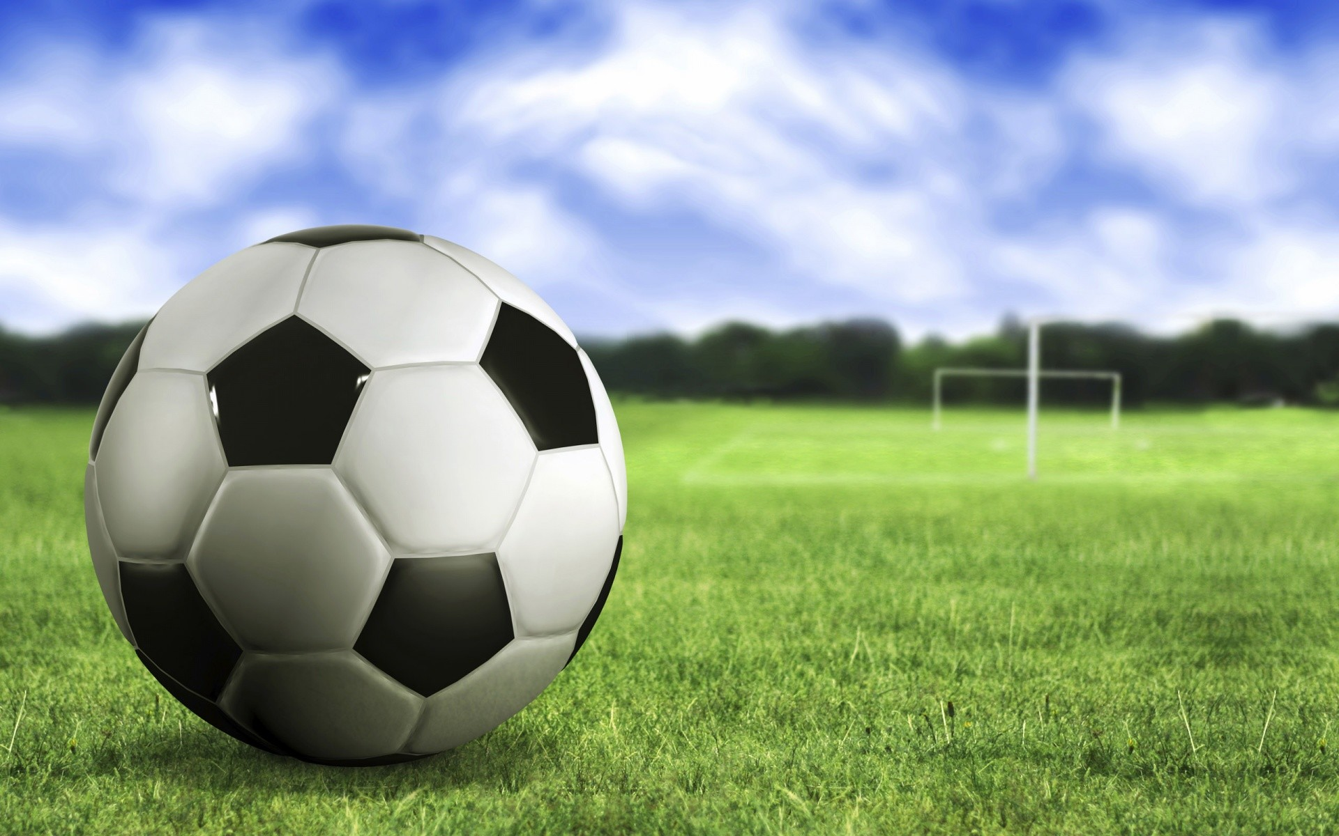 1920x1200 Soccer ball on the grass wallpapers and stock photos