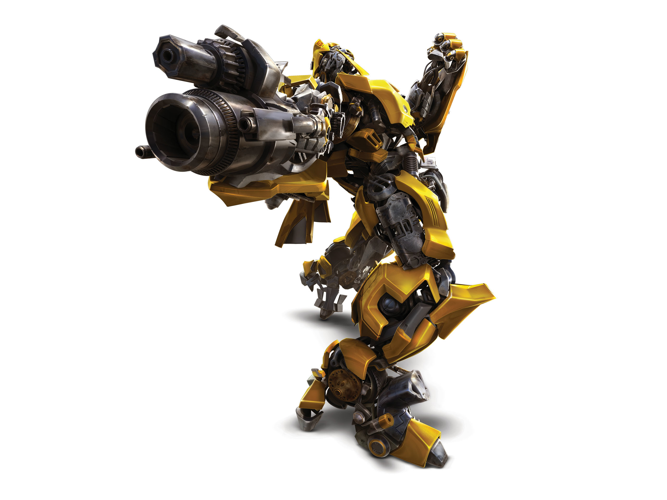 2560x1920 Bumblebee pose 1  wallpaper