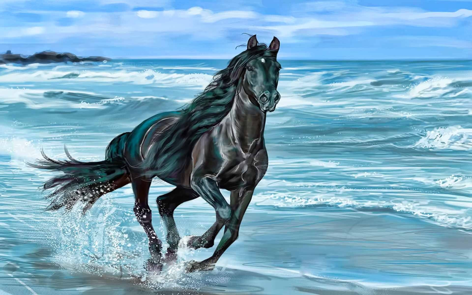 Cool Full Hd 7 Horse Wallpaper Hd Download Images