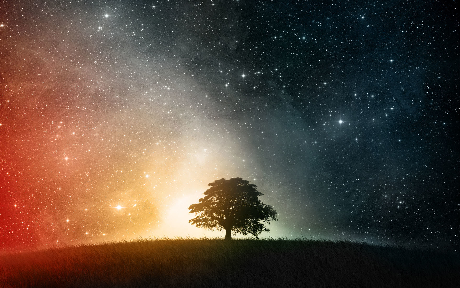 1920x1200 Beautiful Tree Shadow on Starry Sky  wallpaper