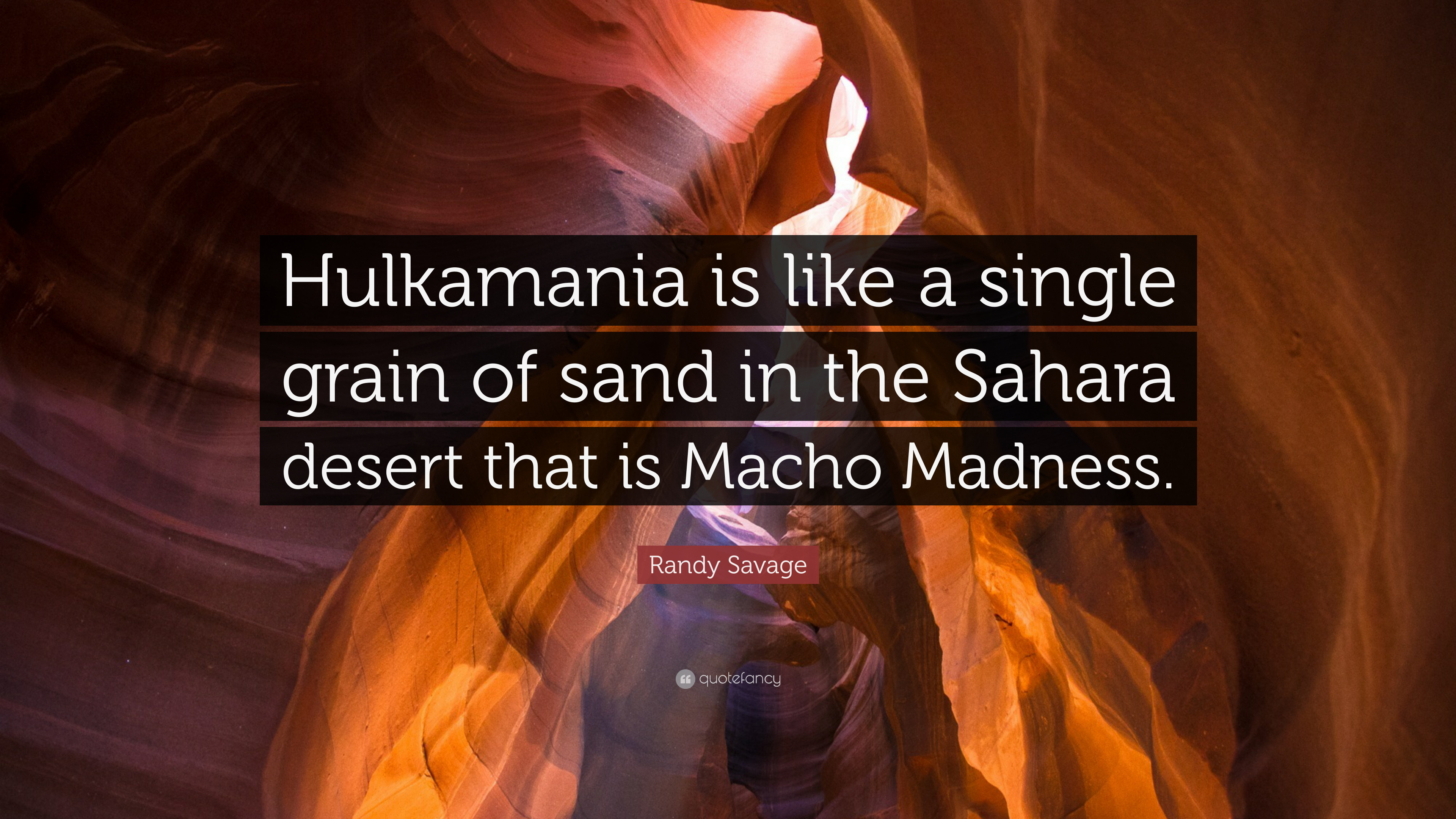 "3840x2160 Randy Savage Quote: ""Hulkamania is like a single grain of sand in the Sahara"