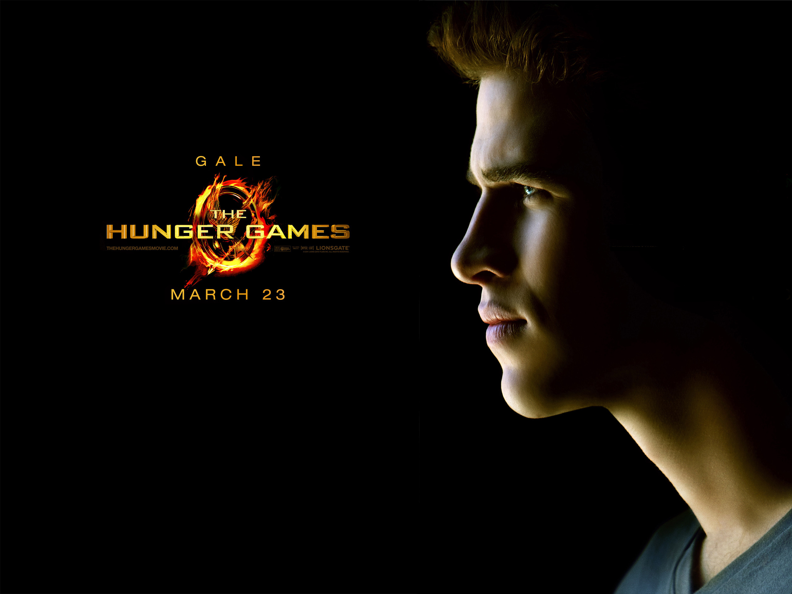 2560x1920 Liam Hemsworth Hunger Games