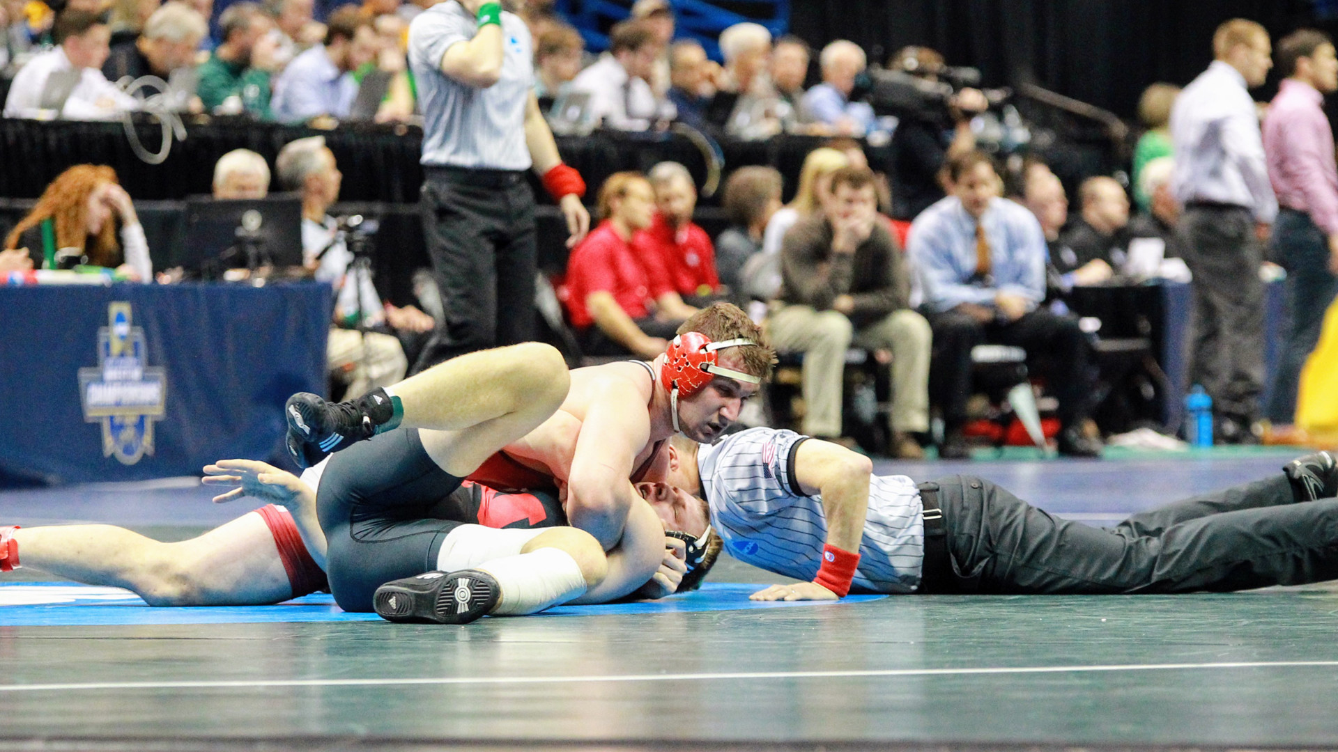 1920x1080 Wrestling concludes run at NCAA Championships; Haven led by Haines