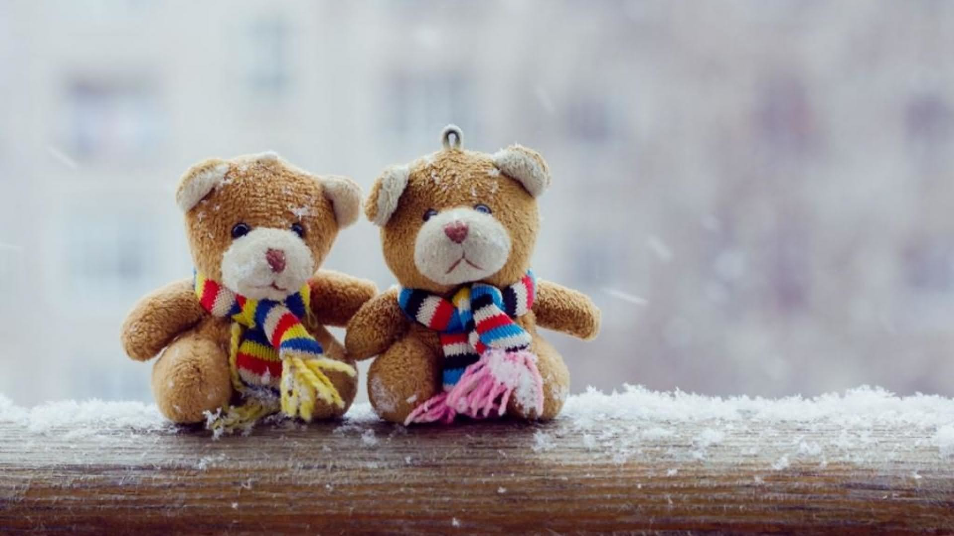 Teddy Bear Wallpaper 58 Images