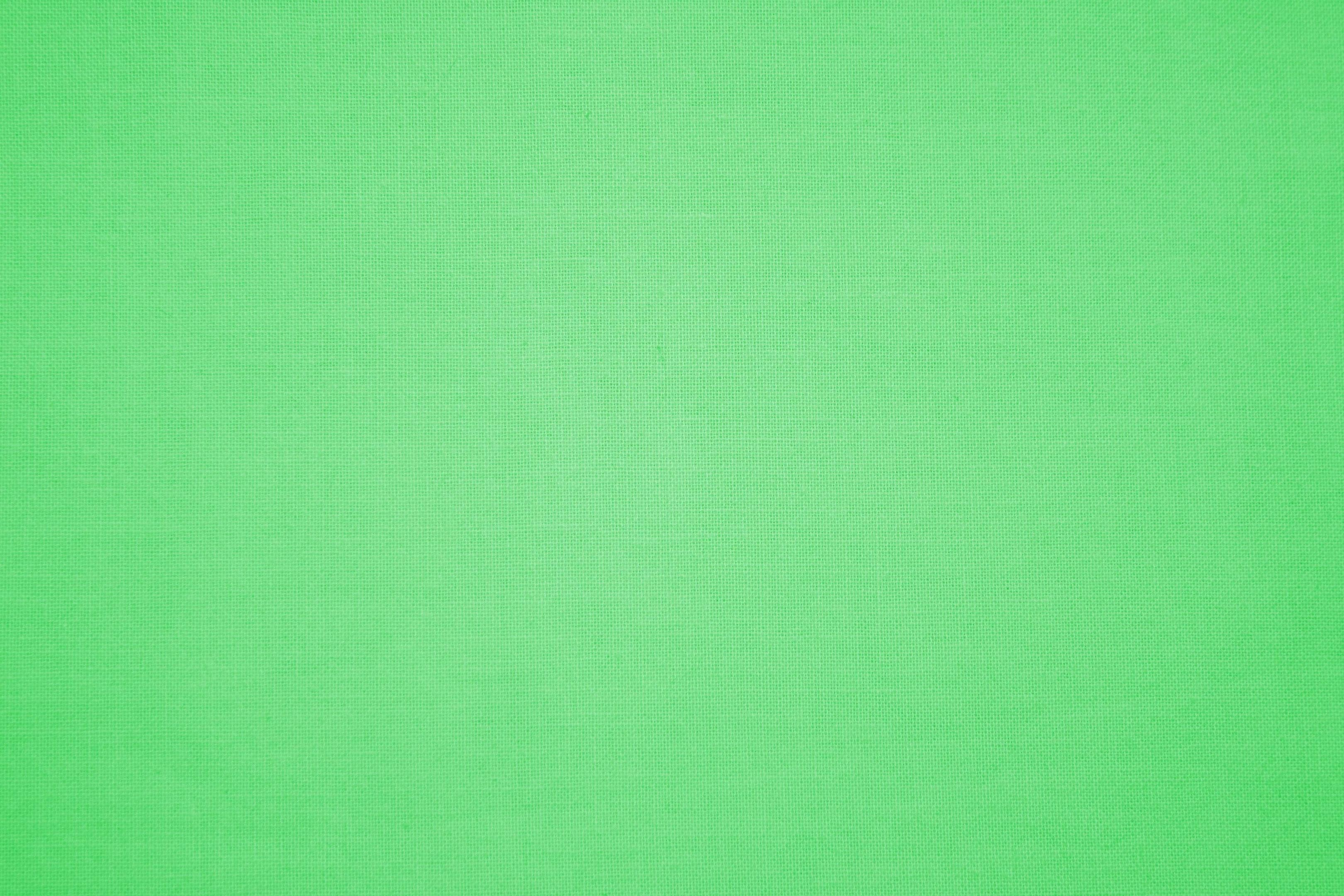 3240x2160 Light Green Wallpaper Desktop 23994 HD Pictures | Top Background Free