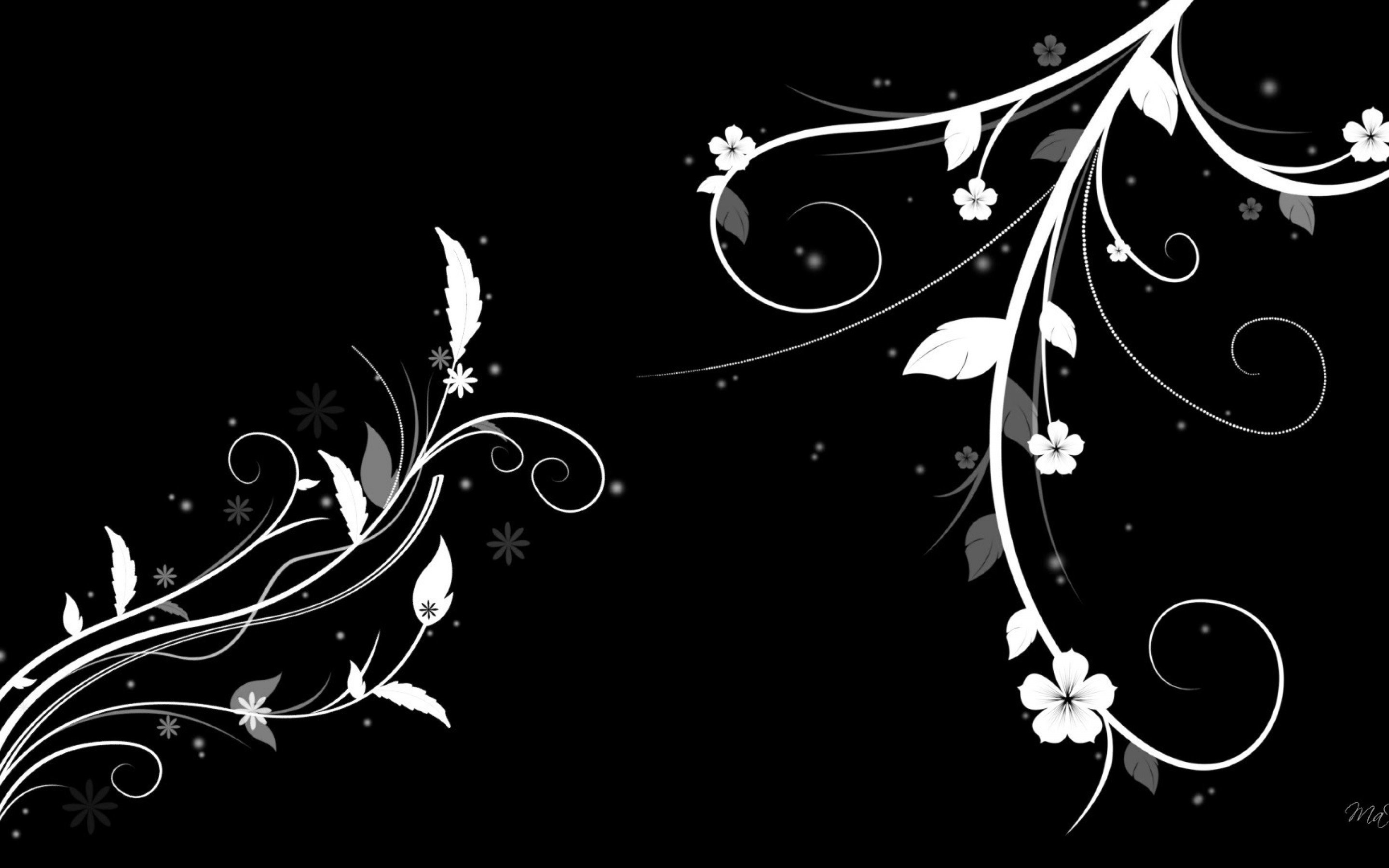 2880x1800 Black And White Floral Wallpaper