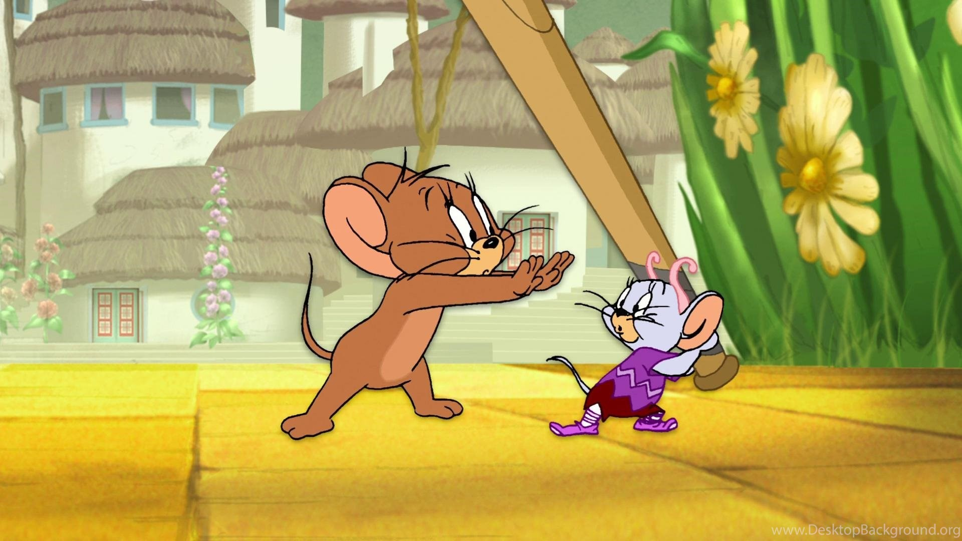 Tom Jerry Wallpapers 51 Images