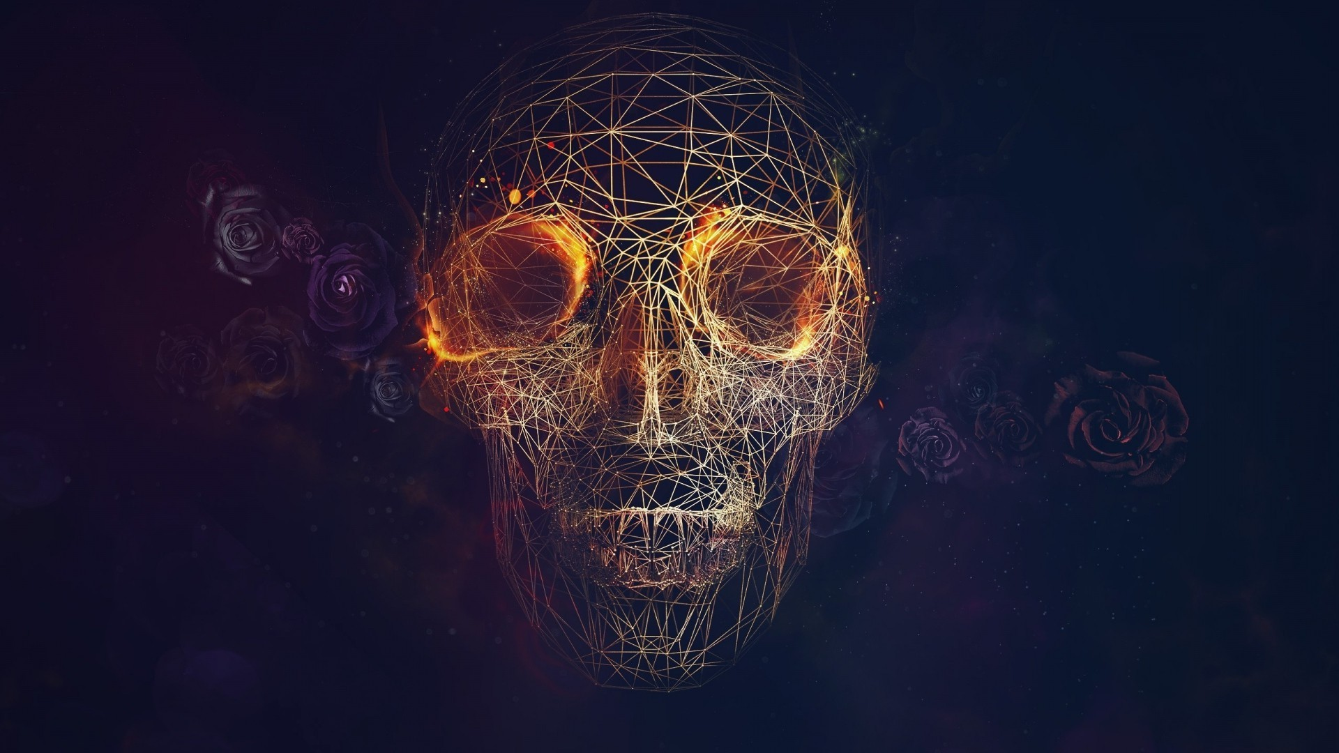 1920x1080 wireframe, CGI, Skull, Fire, Rose, Vectors, Lines, Blue Background  Wallpapers HD / Desktop and Mobile Backgrounds