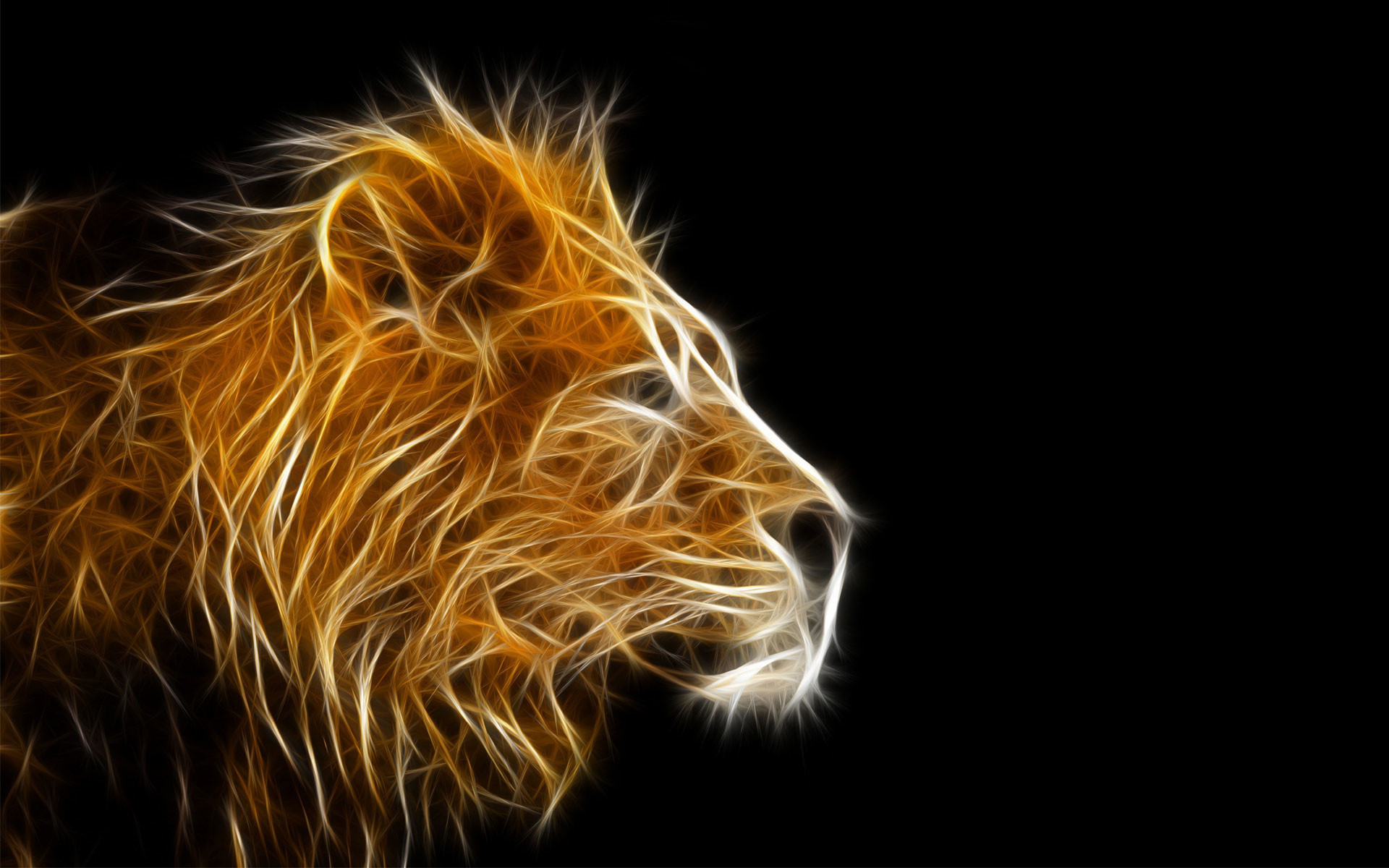 1920x1200 3d animal wallpapers- Lion wallpaper
