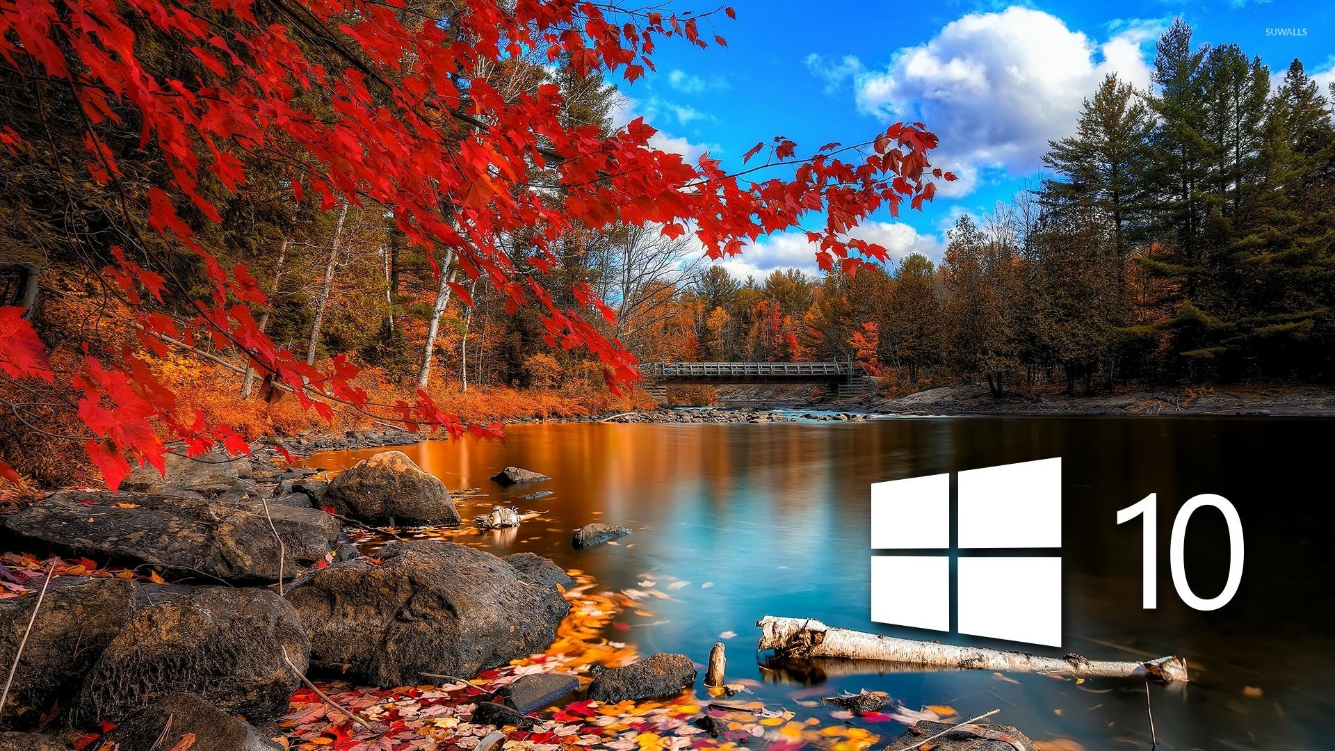 Animated Wallpaper on Windows 10 (60+ images)