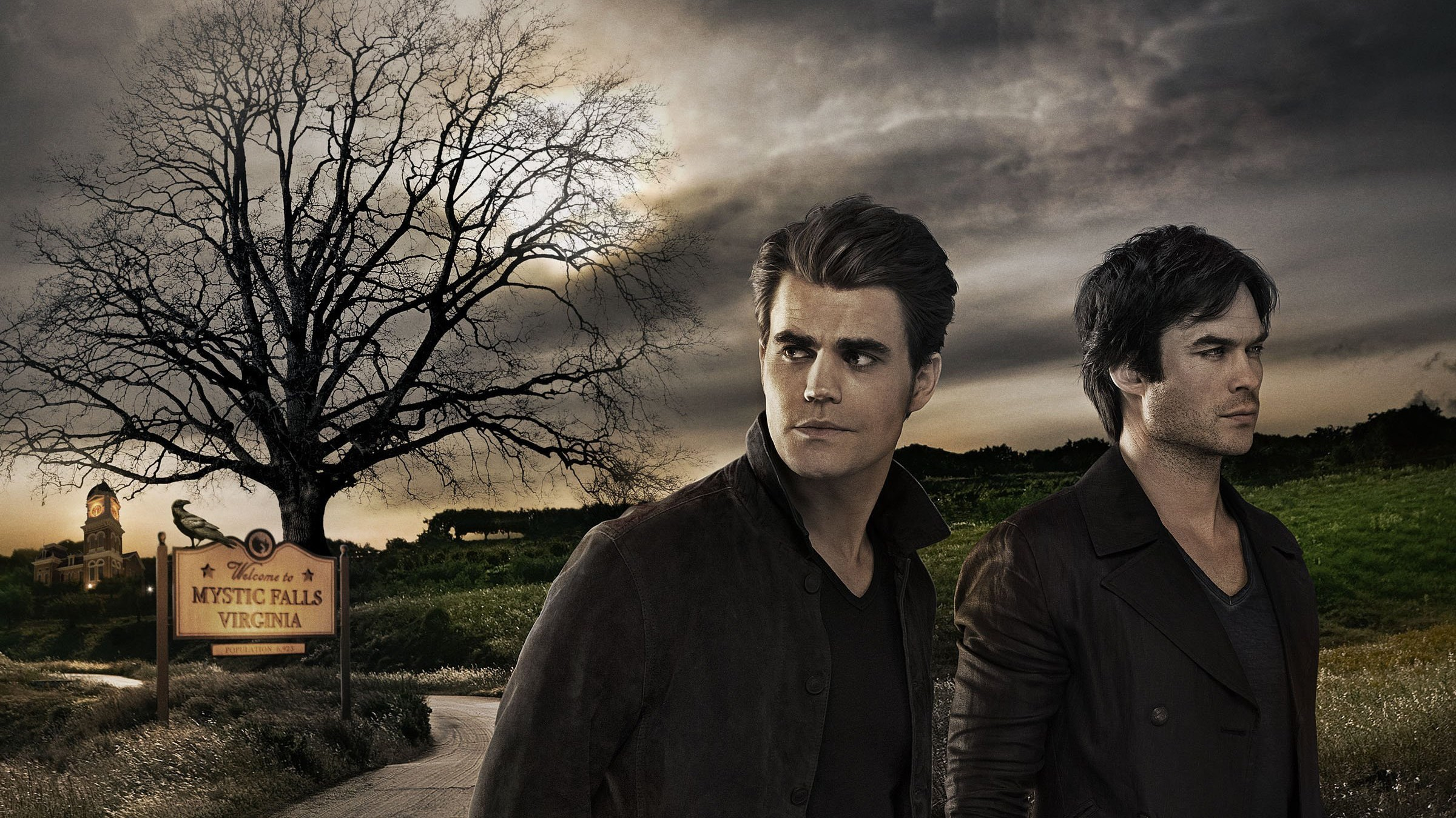 the vampire The new york times bestselling vampire diaries books, and the hit cw tv show that the book series inspired, revolve around high school mortal elena gilbert and her epic love triangle with vampire brothers stefan and damon salvatore.
