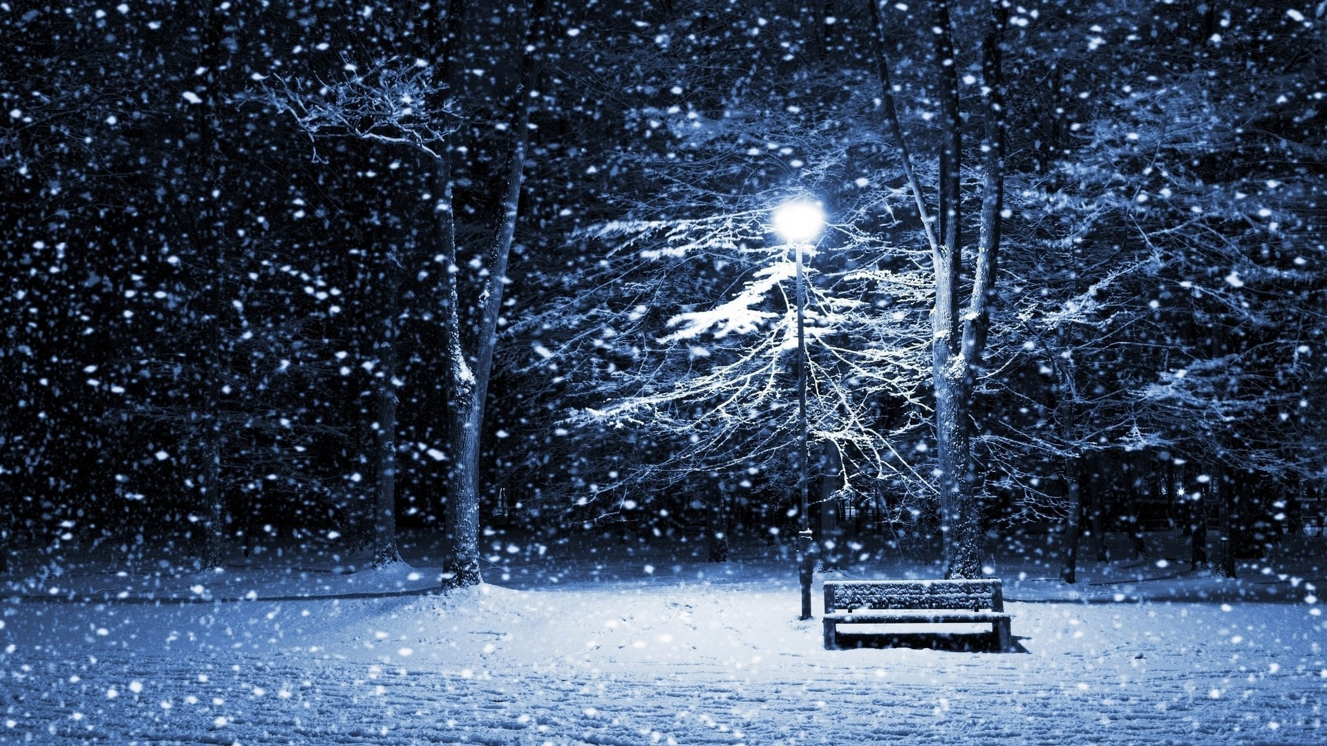 1920x1080 trees night snow winter lantern ice cold frost Freezing weather season   px