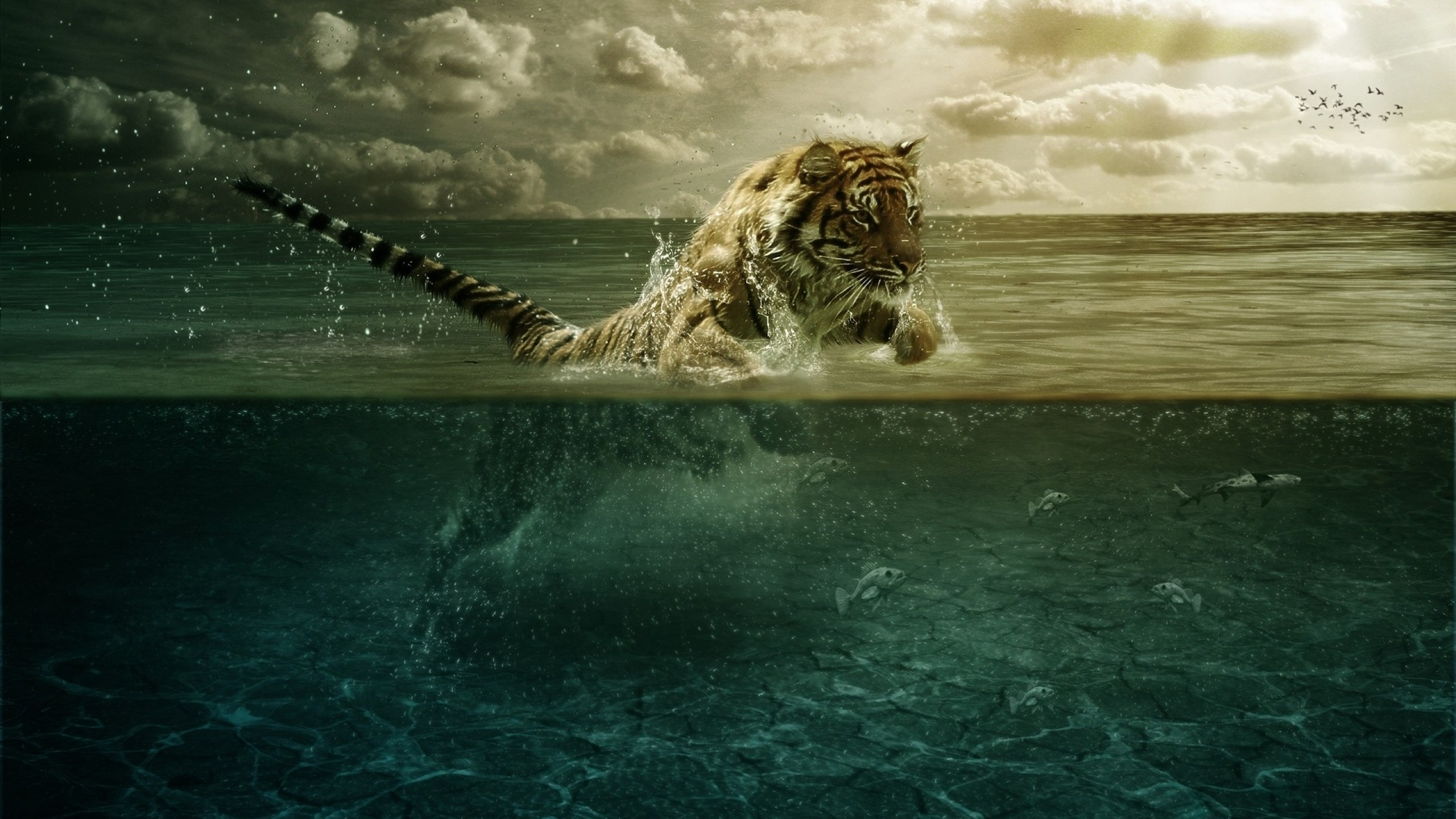 2560x1440 ... Background Mac iMac 27.  Wallpaper tiger, jump, sea,  underwater, hunting