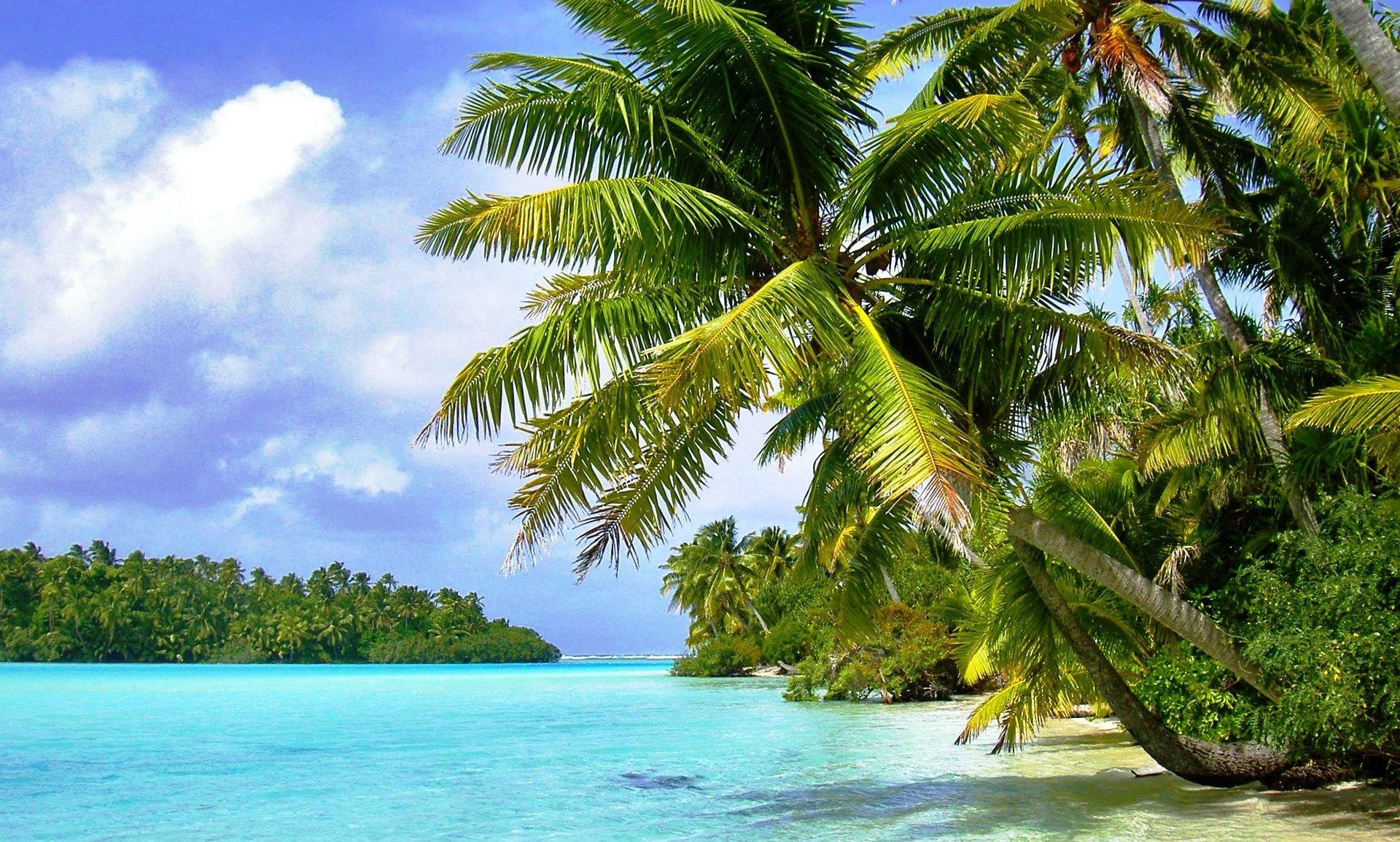 tropical island background 57 images