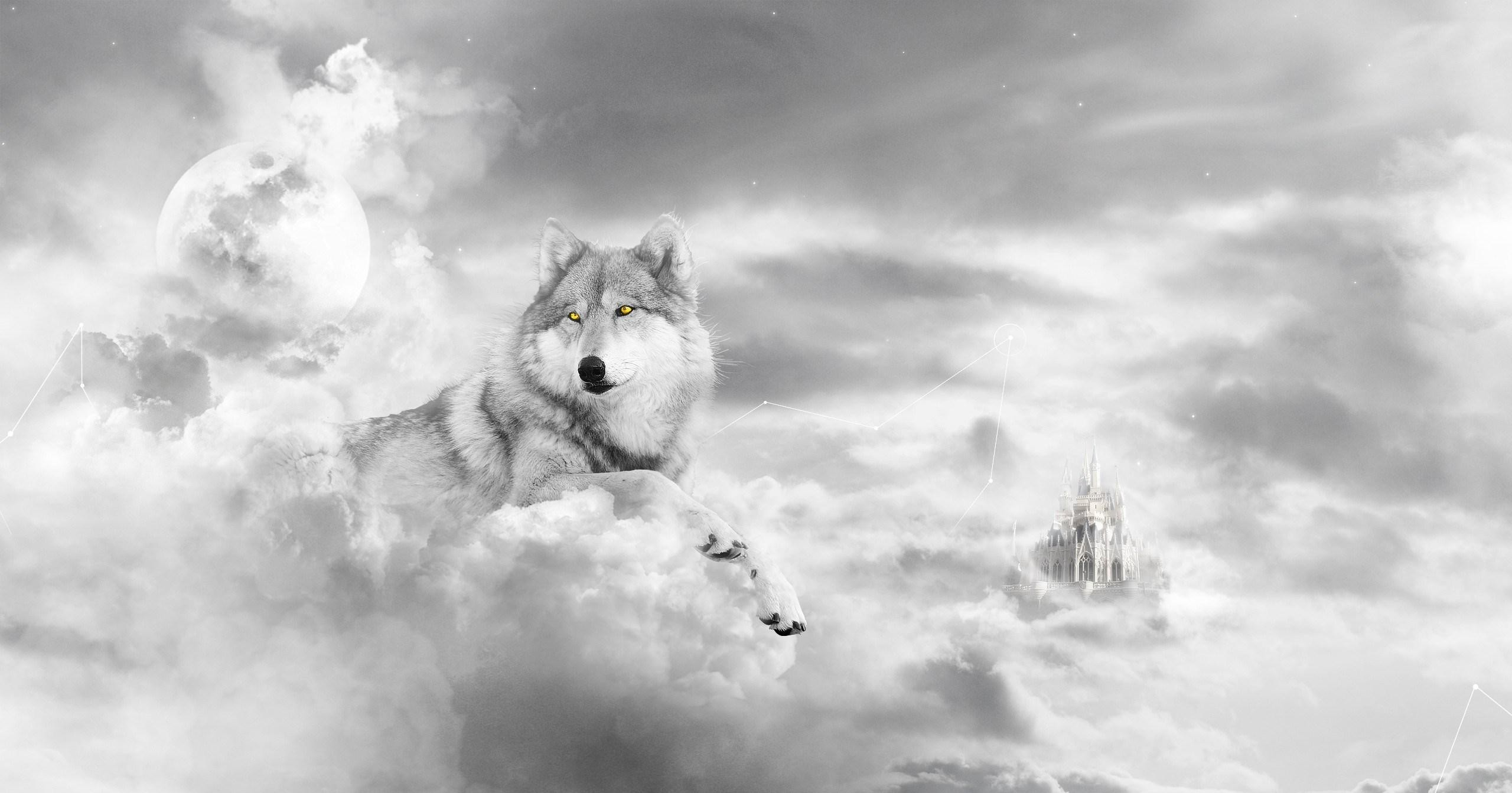 2560x1343 cool wolf in the clouds wallpaper Check more at http://www.finewallpapers