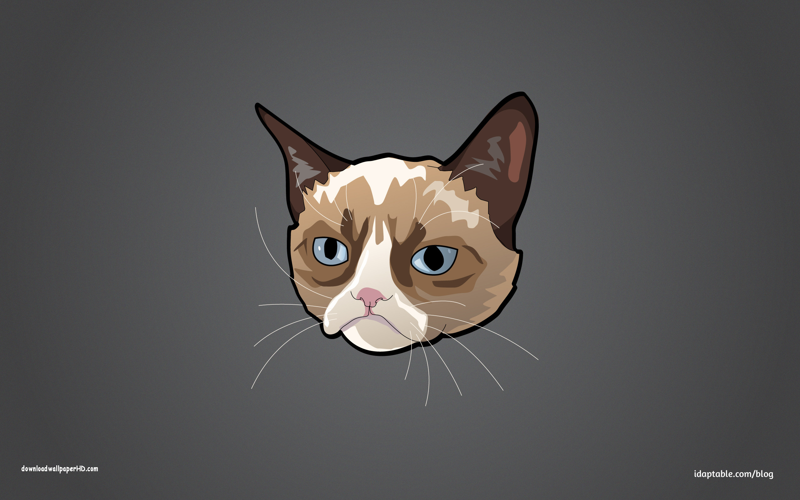 Grumpy cat wallpapers hd 61 images - Cat wallpaper cartoon ...
