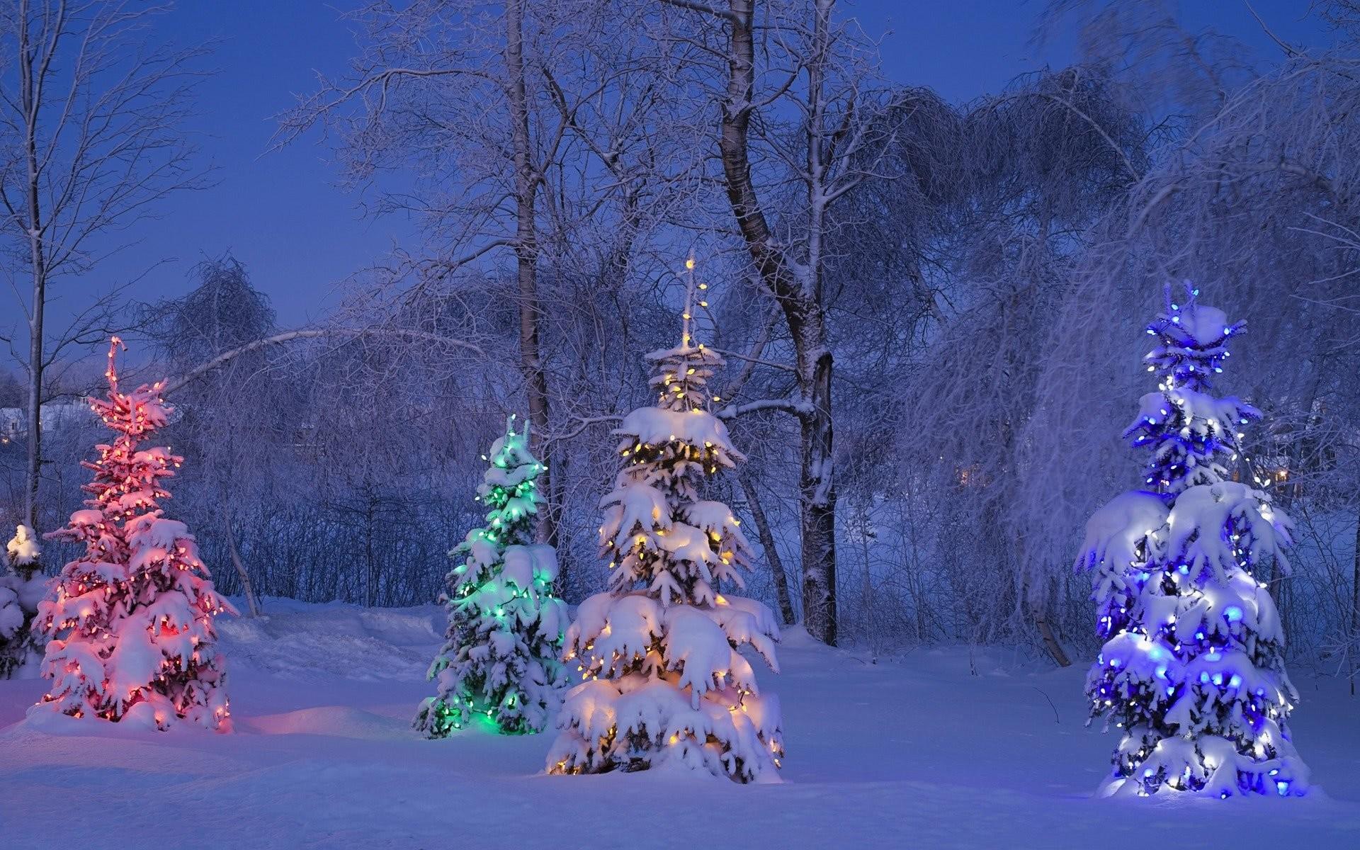 1254359 blinking christmas lights wallpaper 1920x1200 for mac