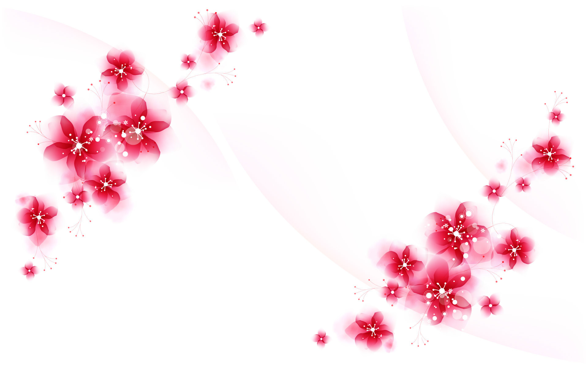 1920x1200 Red flower background pictures free pictures