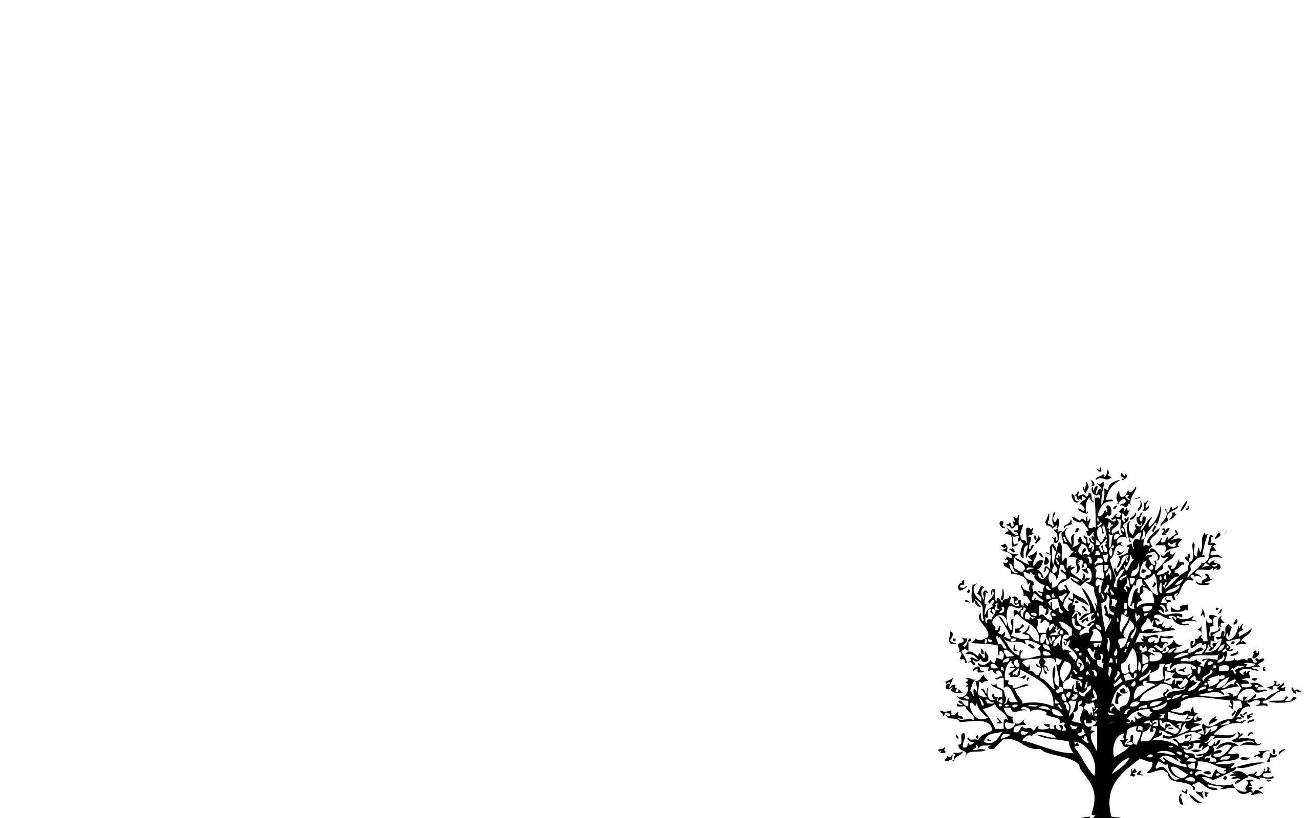 2560x1600 Minimalistic Simple Background Trees White