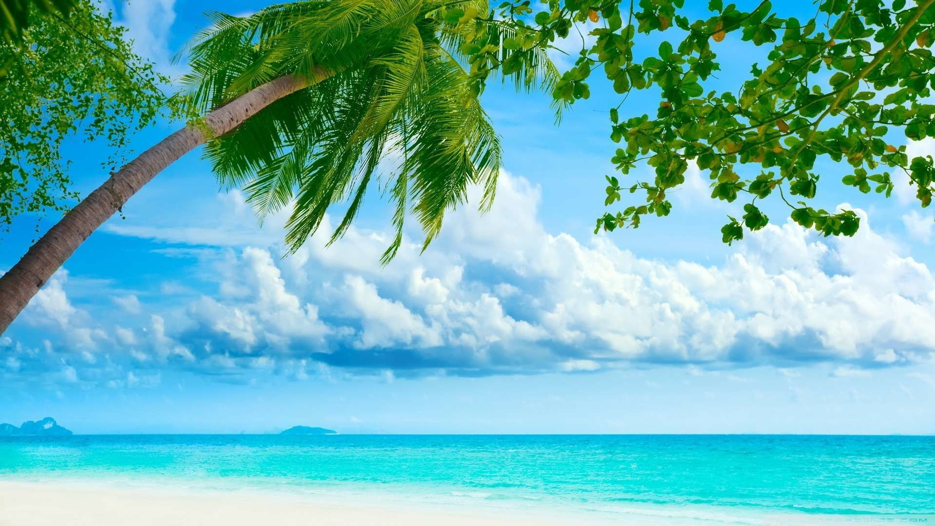 1920x1080 Wallpaper: Tropical Beach Resorts Wallpaper 1080p HD. Upload at .