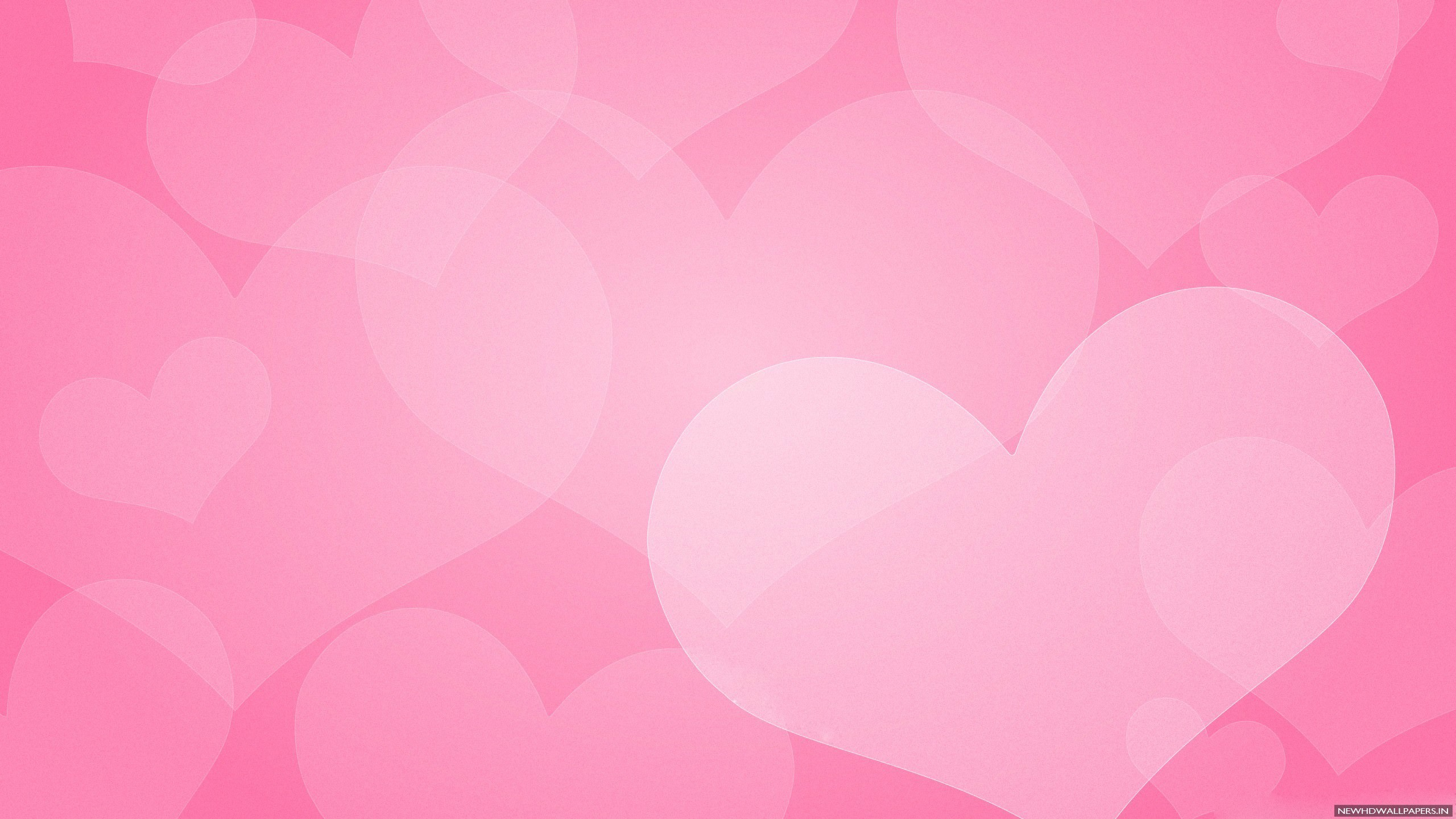 2560x1440 Cool Pink Plain Background