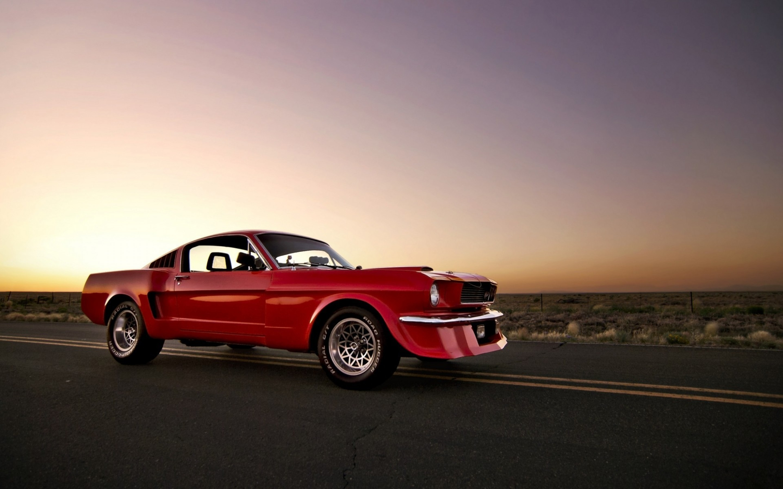Mustang 4k Wallpaper 44 Images