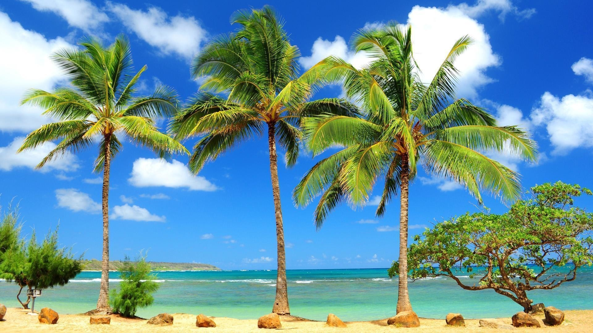 1920x1080  Caribbean Beach Wallpapers Free - | My Wallz - Wallpapers free to  .