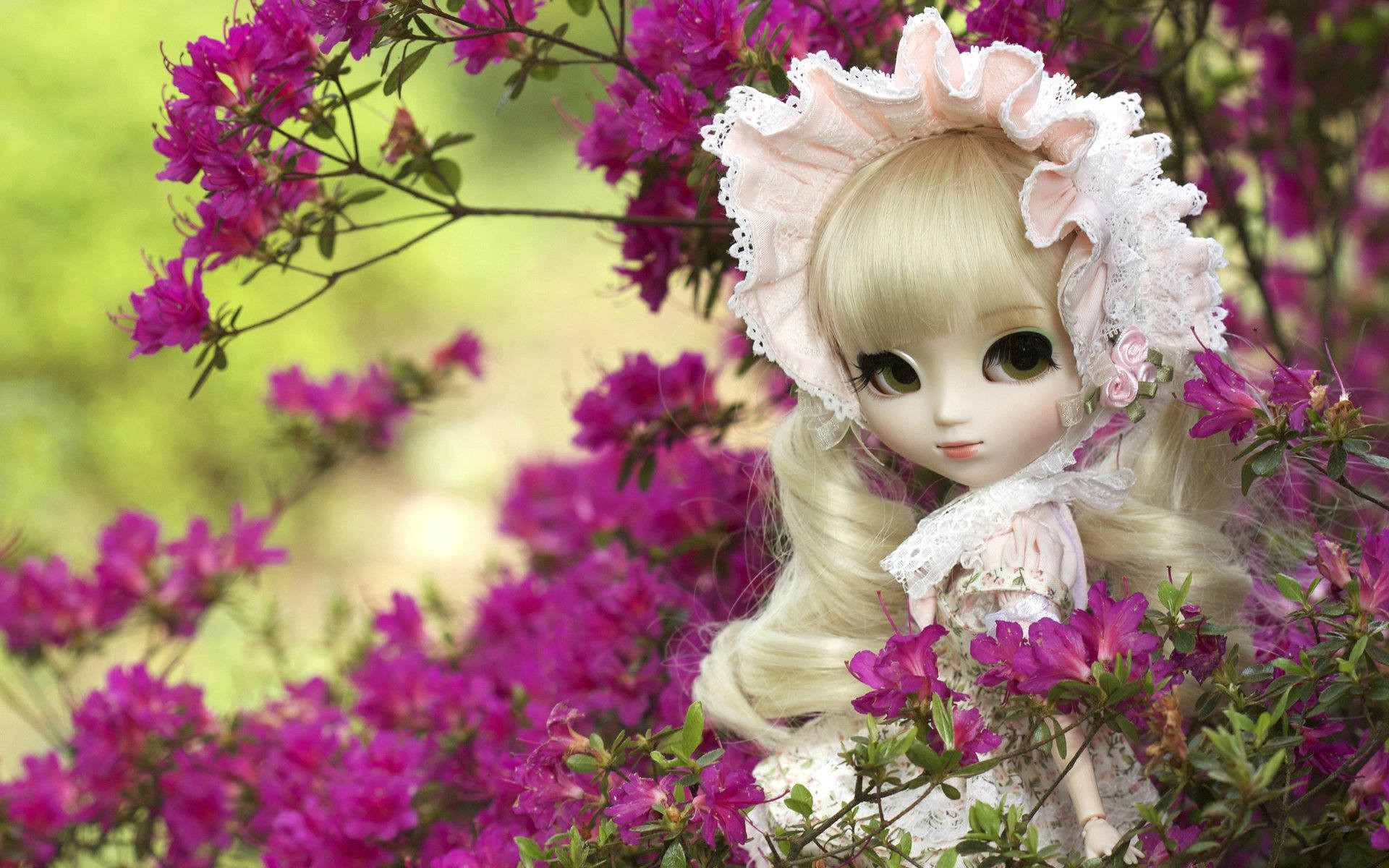 1920x1200 Cutest Doll HD Wallpapers