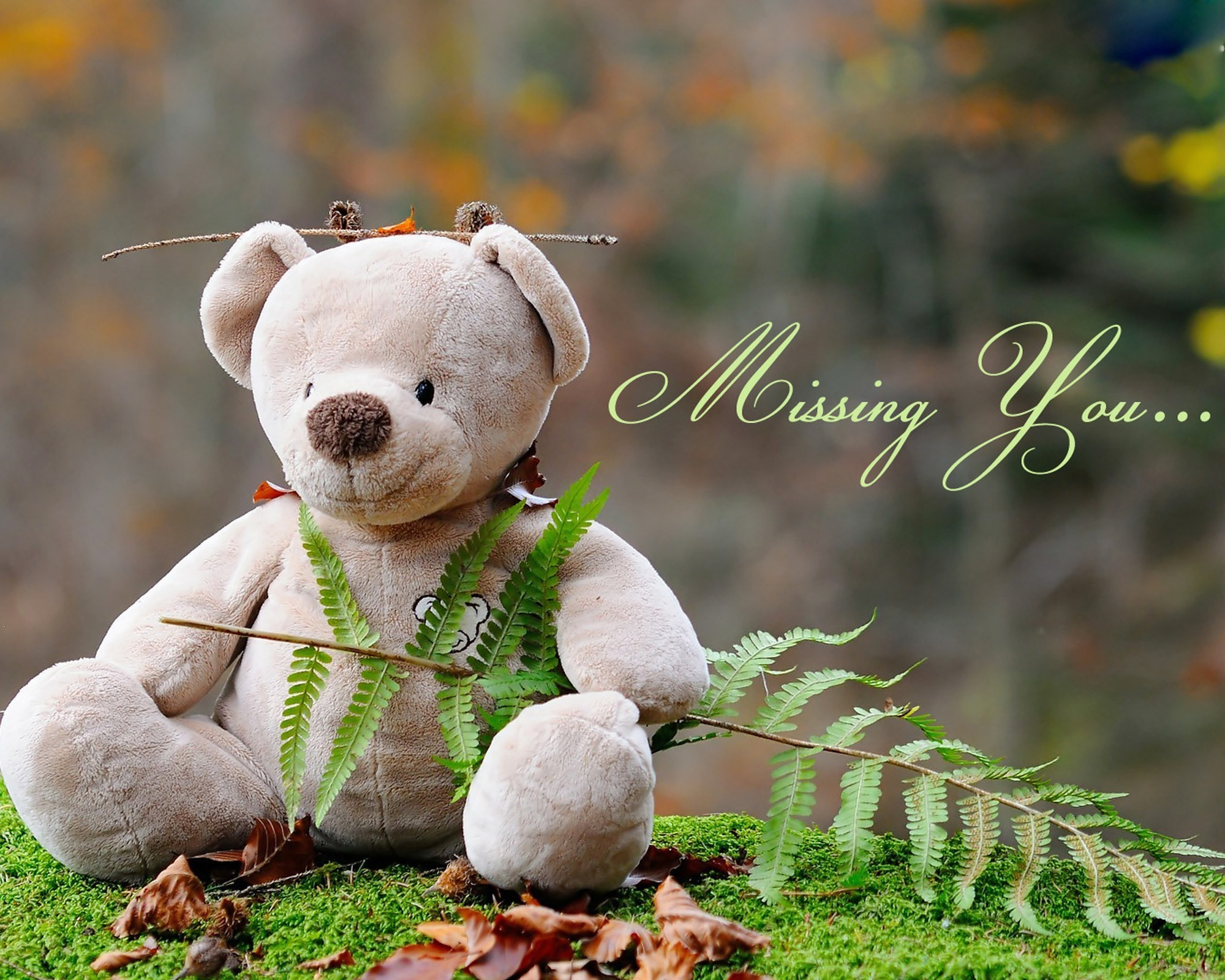 Cute teddy bears wallpapers 59 images 2048x2048 download preview voltagebd Gallery