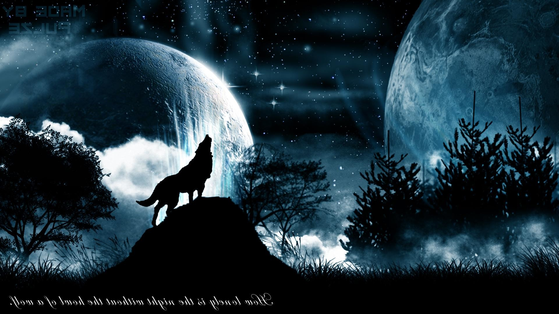 1920x1080 Black Wolf Howling Wallpapers Images