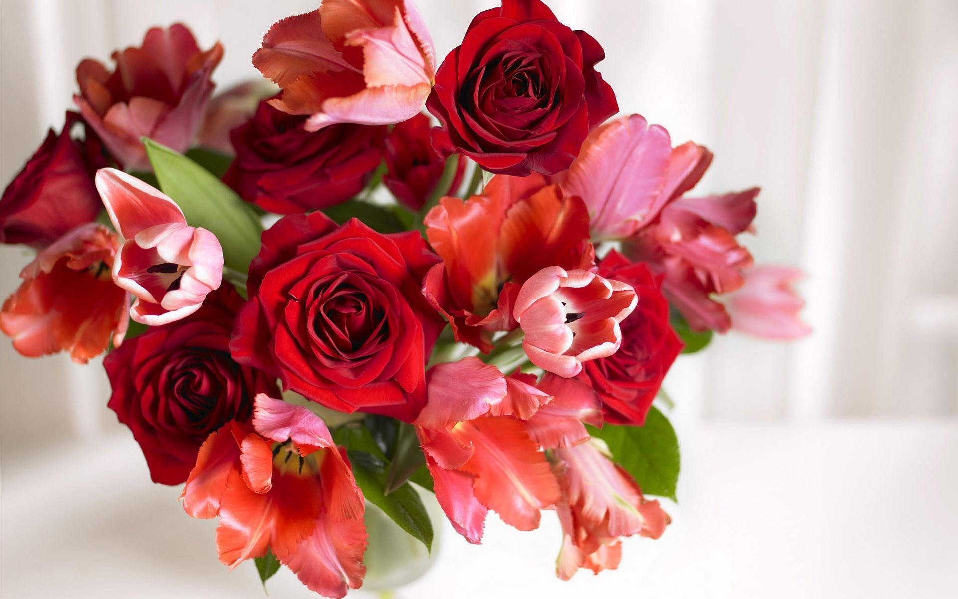 Roses Screensaver Wallpaper 45 Images