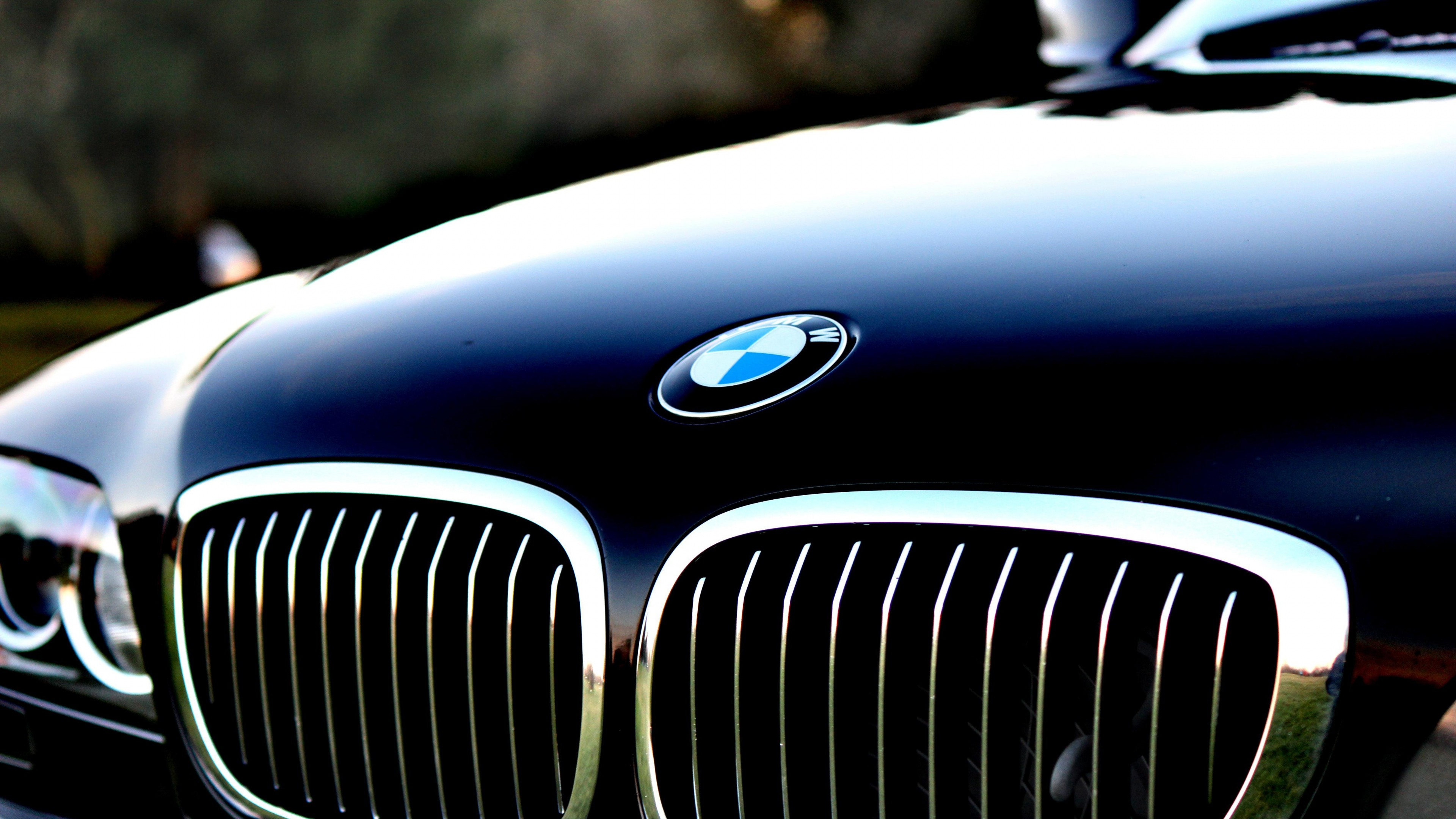 Bmw wallpaper 4k logo