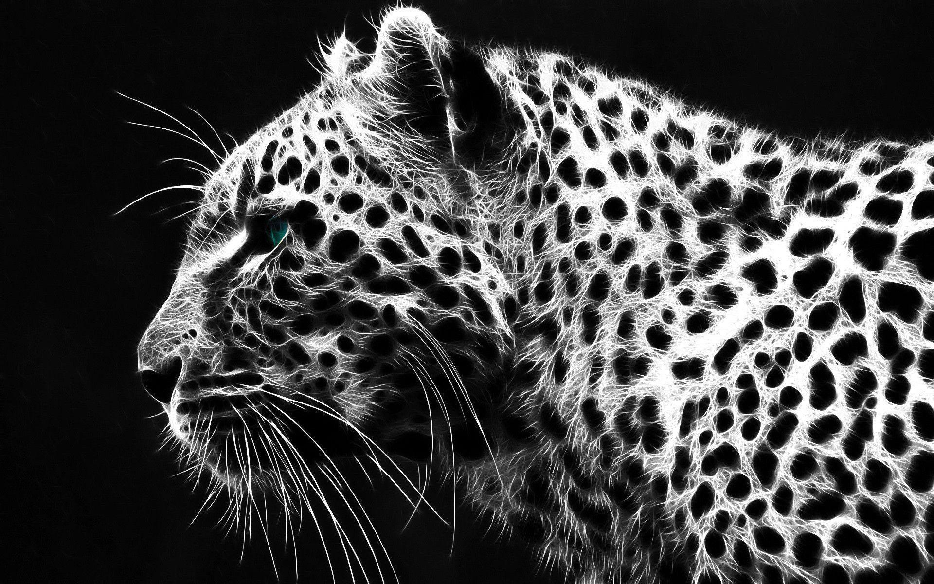 Cheetah wallpaper 72 images 1920x1080 cute cheetah wallpaper voltagebd Image collections