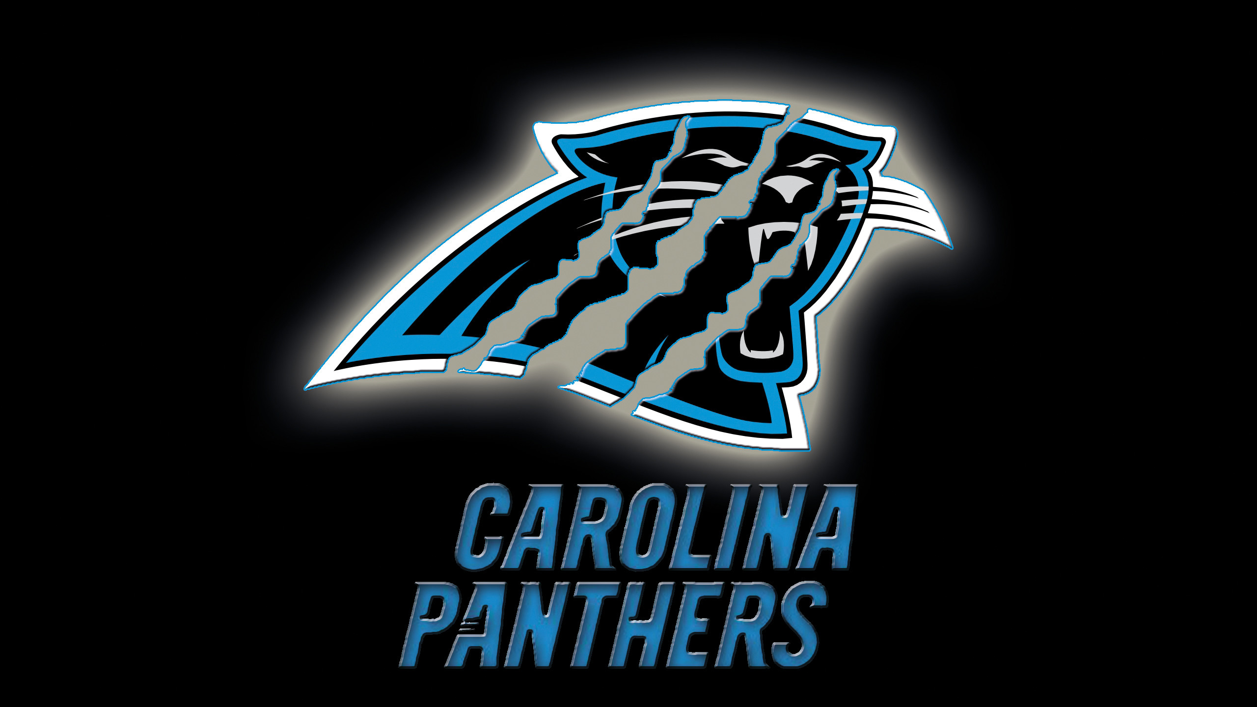 2560x1440 Excellent Carolina Panthers Wallpaper | Full HD Pictures