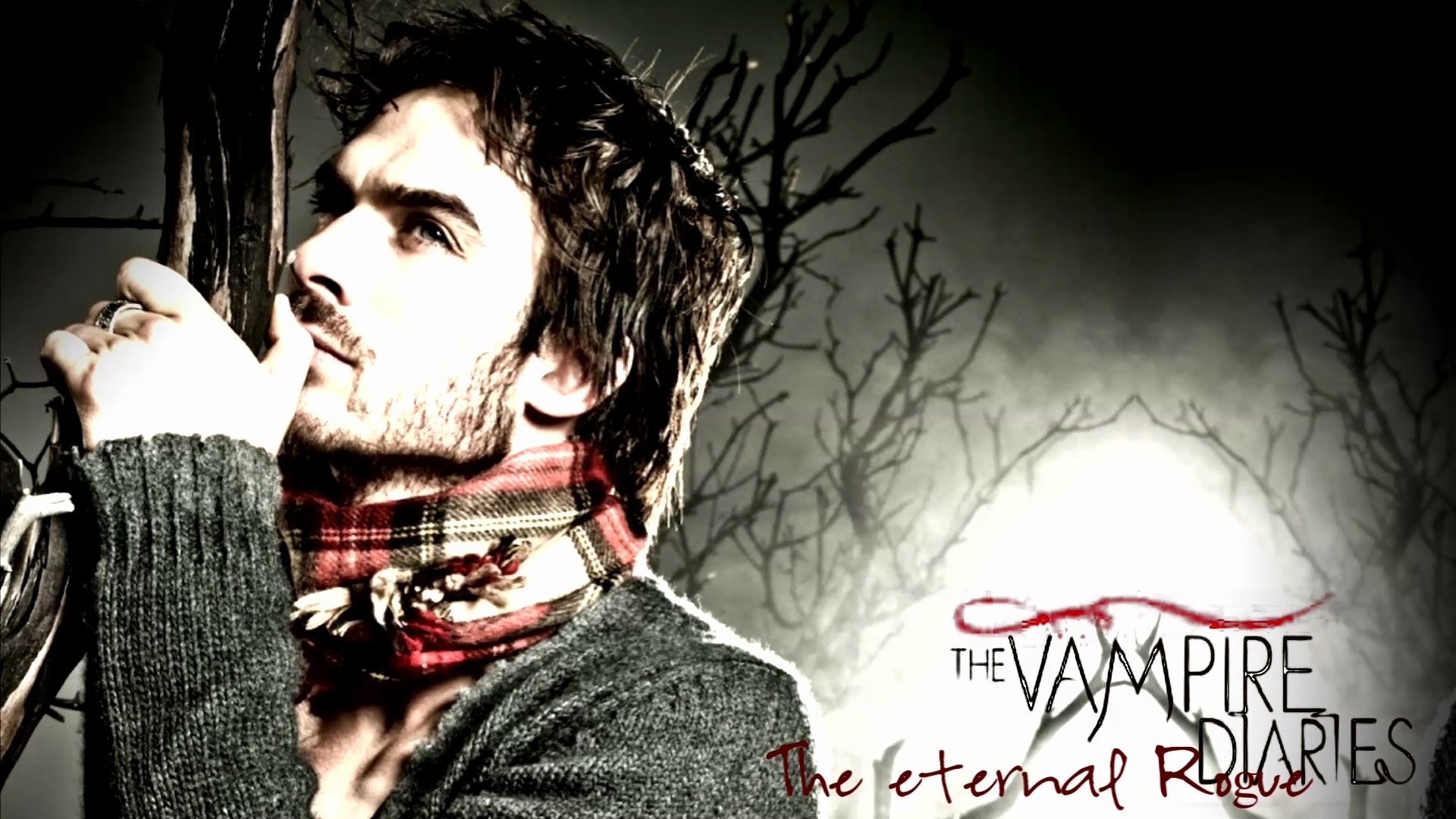 1920x1080 0 1920x1200 Vampire Wallpapers  tv series vampire diaries hd  wallpaper | Background Wallpapers for.