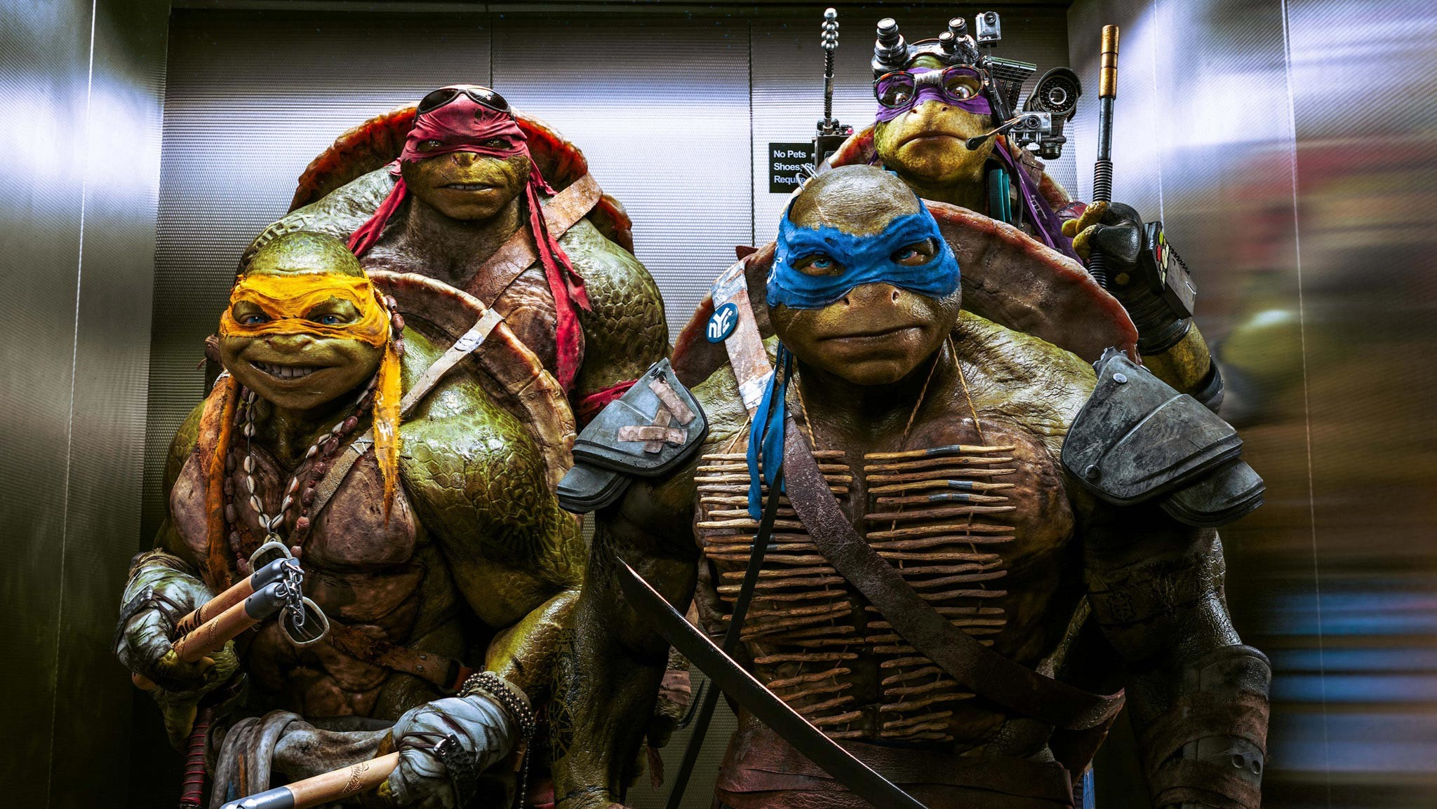 2048x1154 Teenage Mutant Ninja Turtles 2 2016 Movie Wallpaper 28