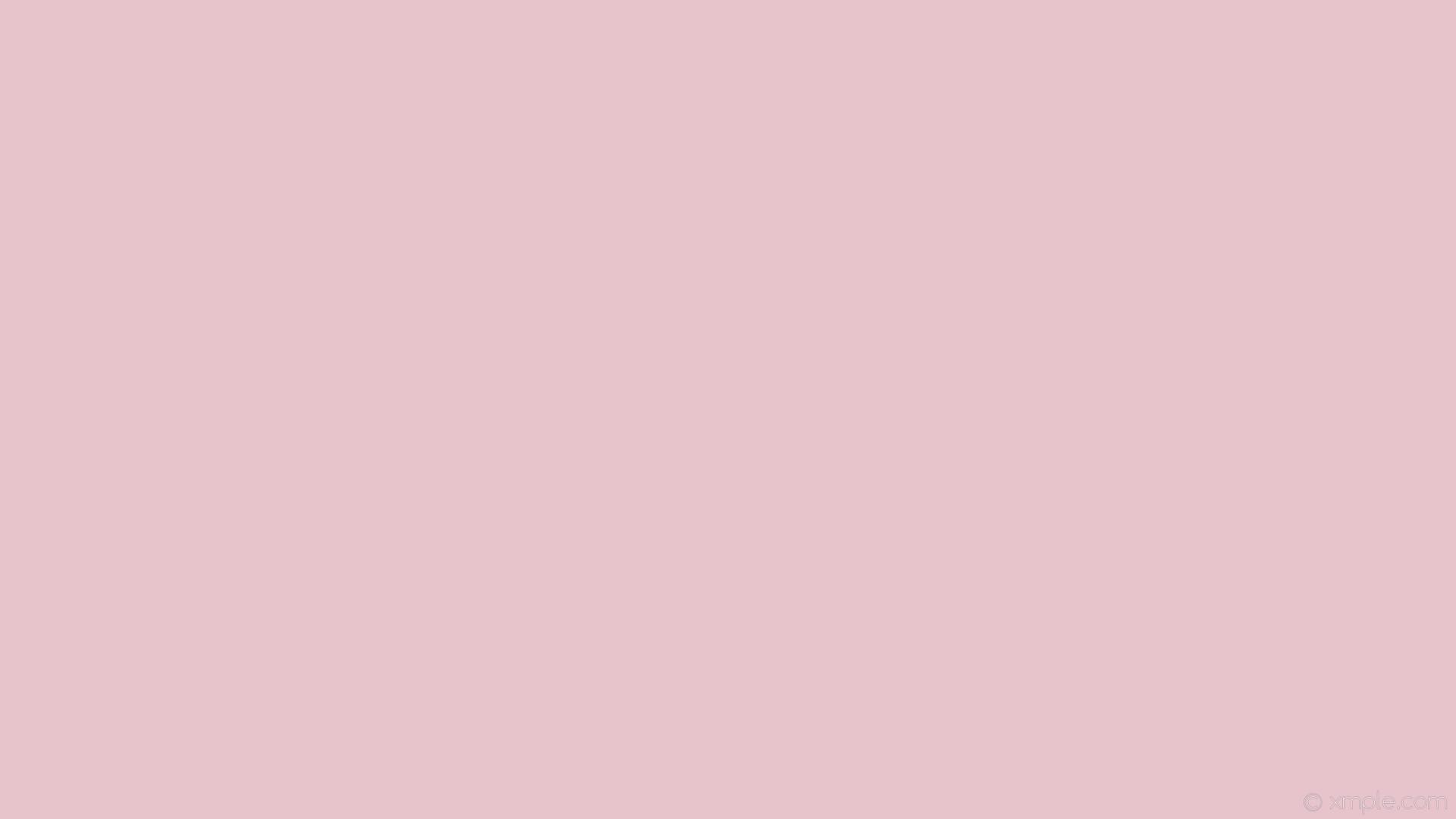 Plain Pink Wallpaper 69 Images