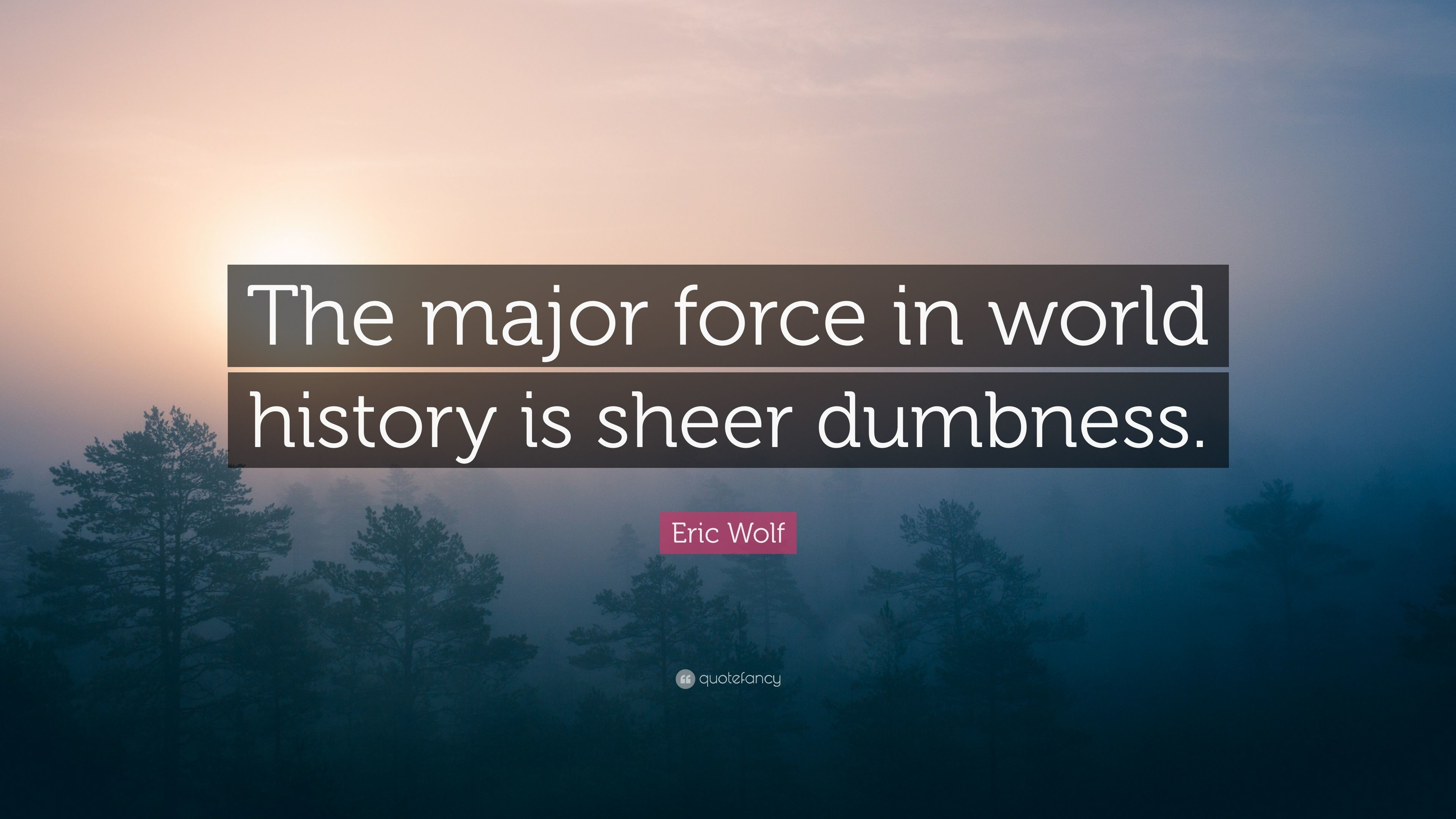 "3840x2160 Eric Wolf Quote: ""The major force in world history is sheer dumbness."""