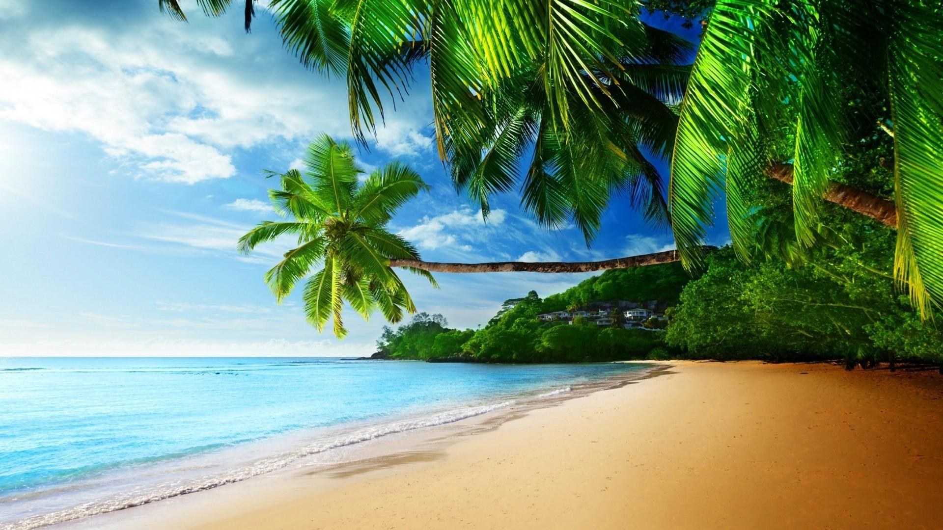 Tropical Beach Screensavers And Wallpaper: Tropical Waves Screensavers And Wallpaper (55+ Images