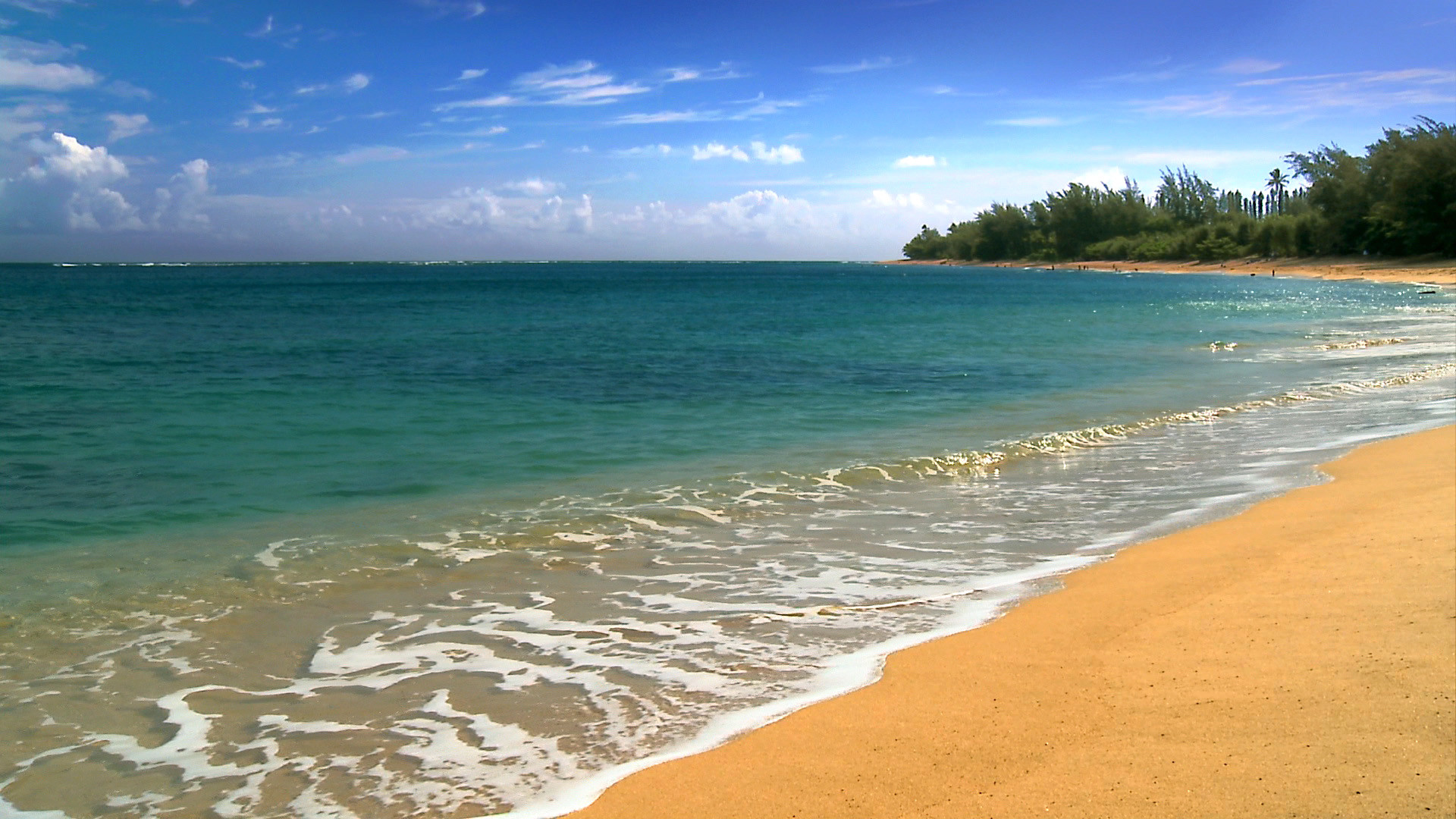 1920x1080 beach wallpapers hawaii beach hd wallpapers hawaii beach hd wallpapers