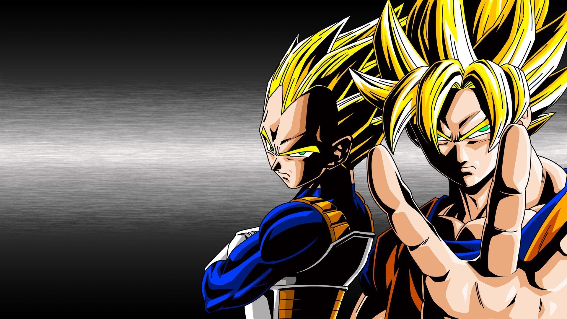 1920x1080 Goku And Vegeta Super Saiyan God Fusion