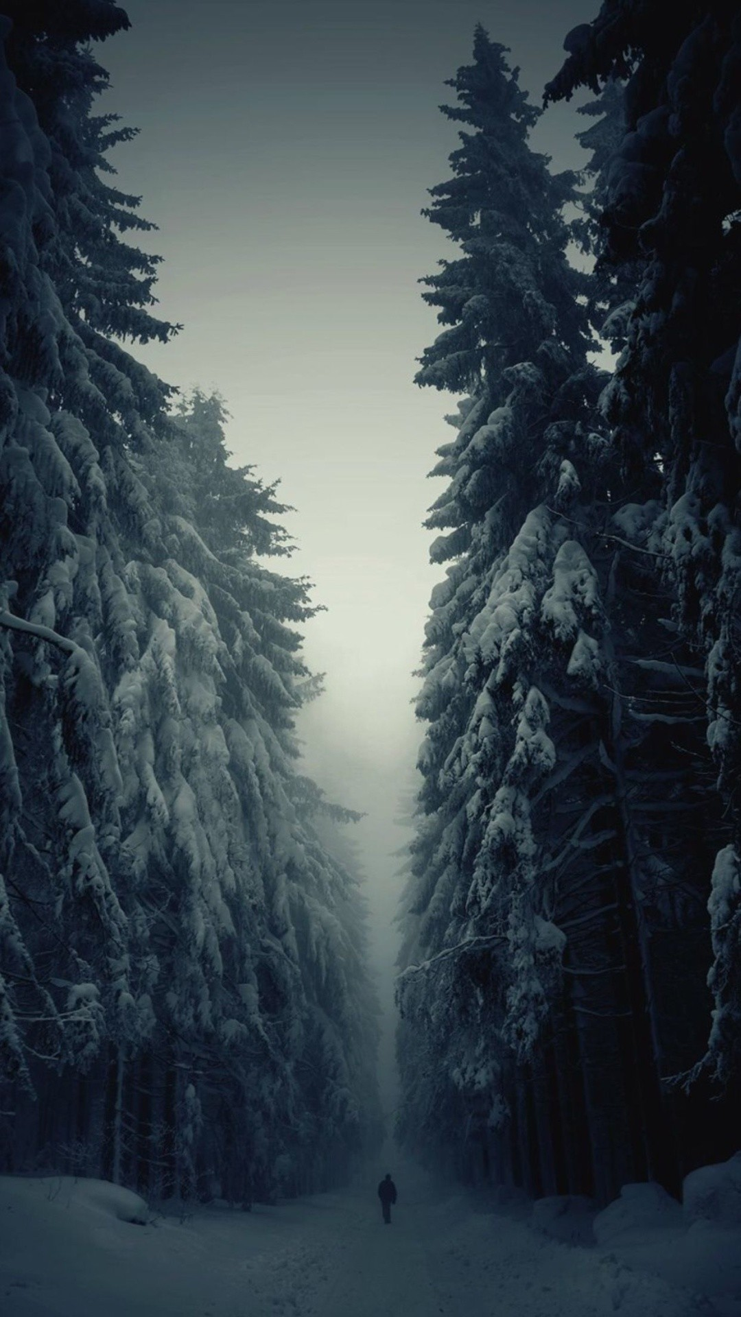 1080x1920 Snow Forest Lonely Walk iPhone 6 Plus HD Wallpaper ...