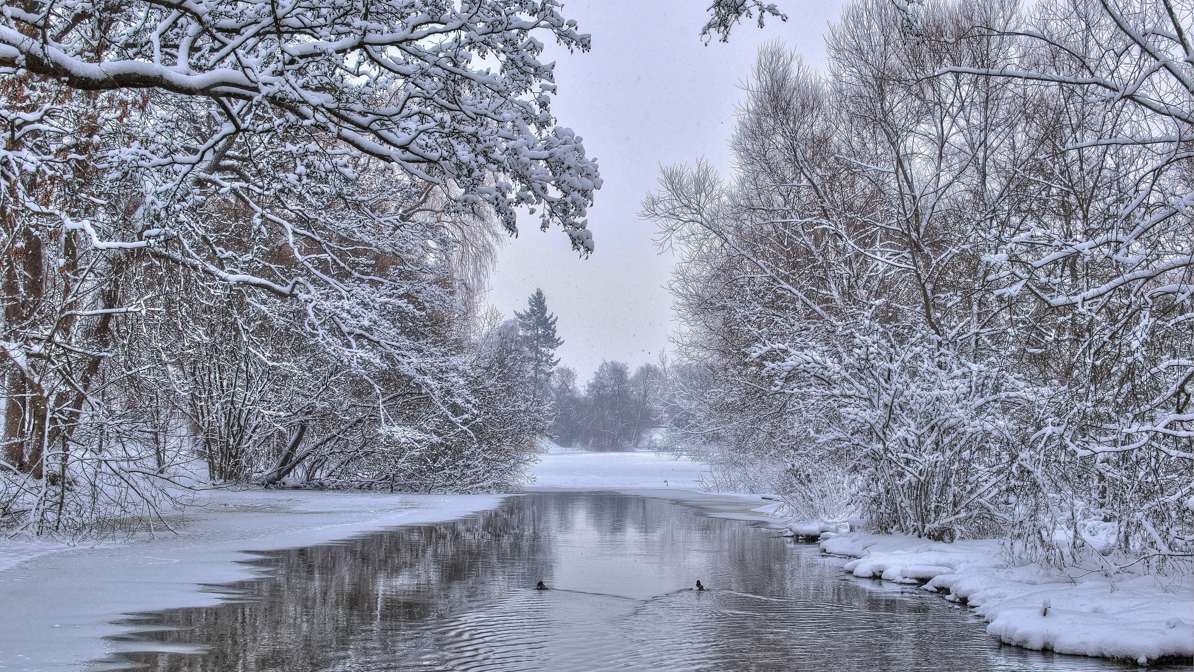 Winter Scene Desktop Background (56+ Images