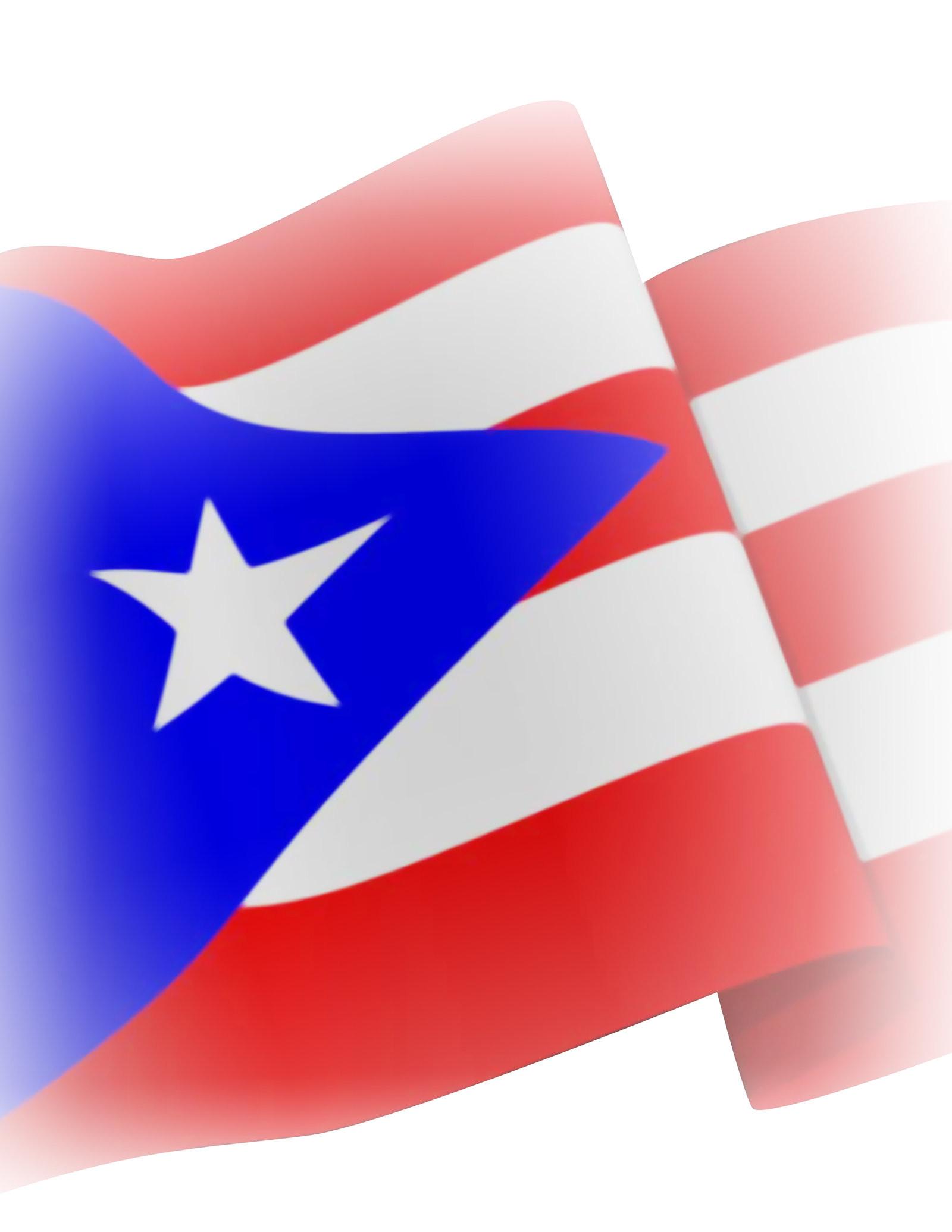 Puerto Rican Flag Bikini